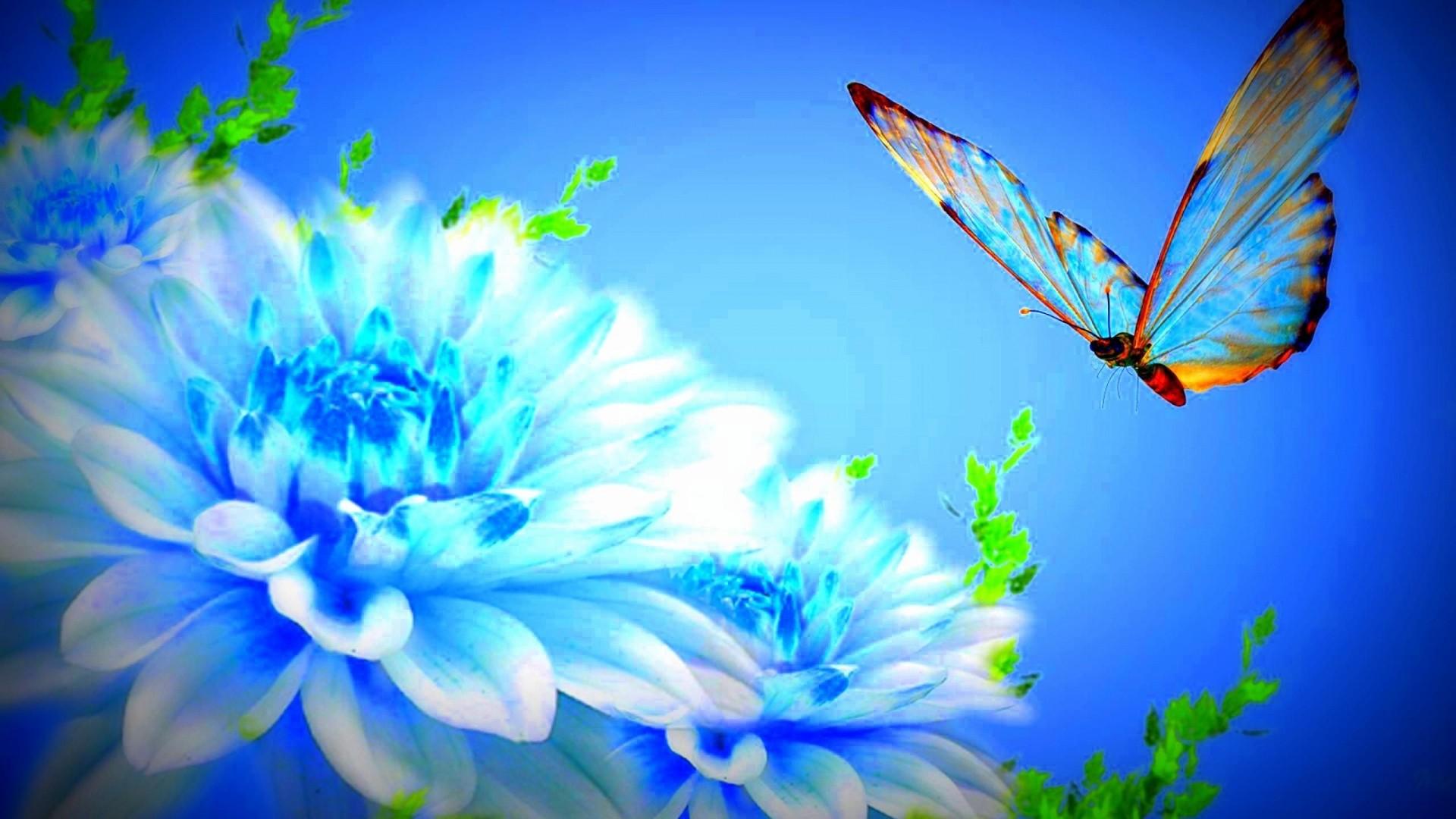 Blue Butterfly hd wallpaper download