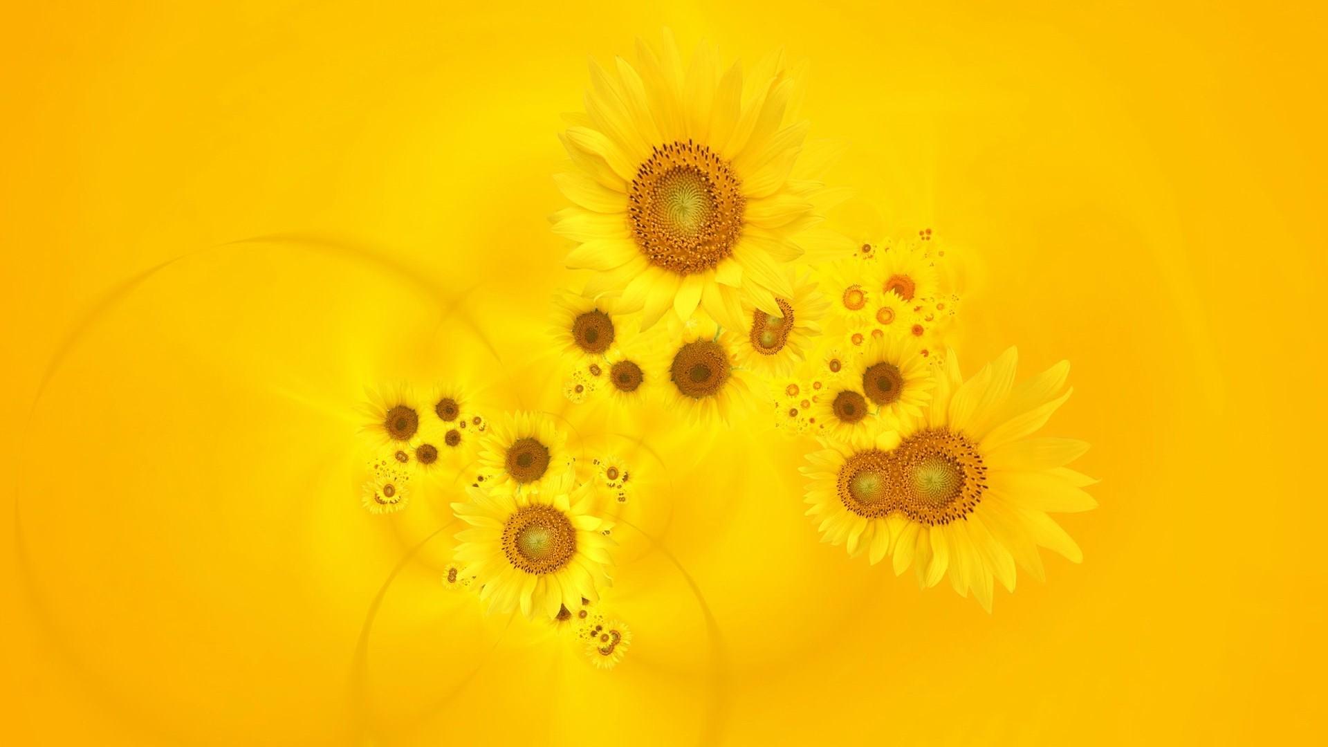 Cute Yellow a wallpaper