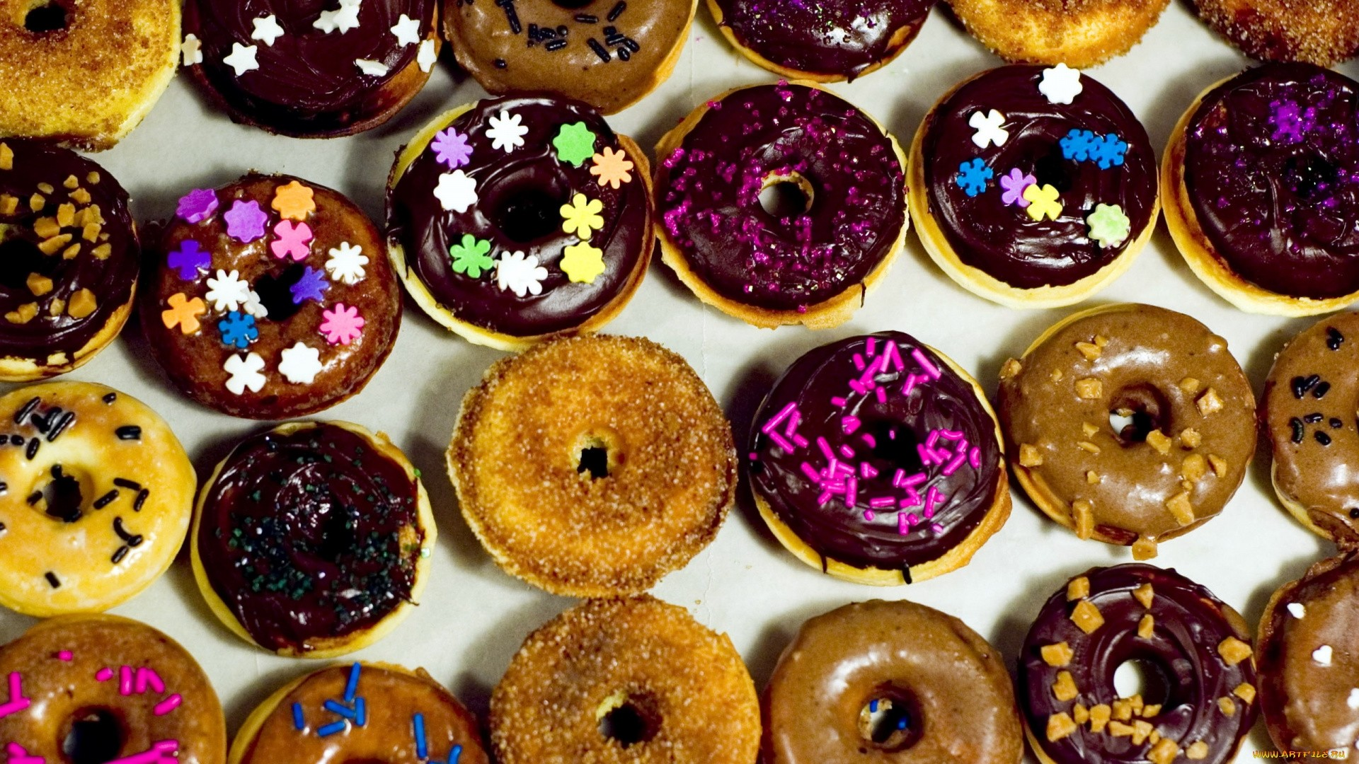 Donut HD Download