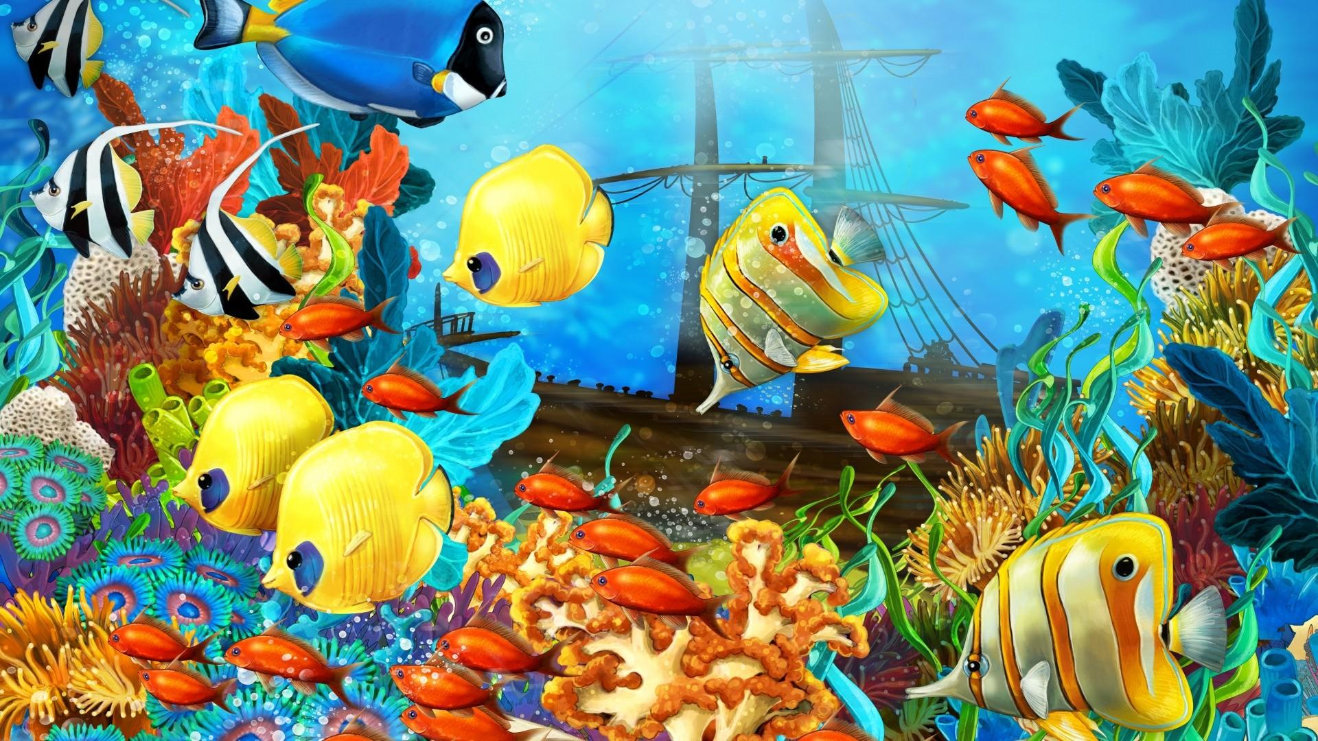Fish Full HD Wallpaper