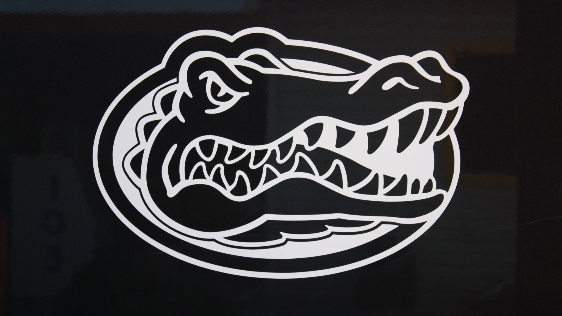 Florida Gators a wallpaper