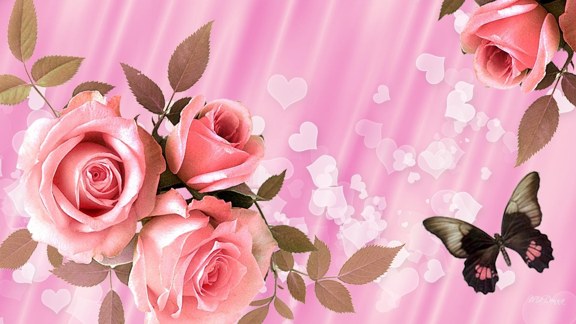 Pink Rose Desktop Wallpaper