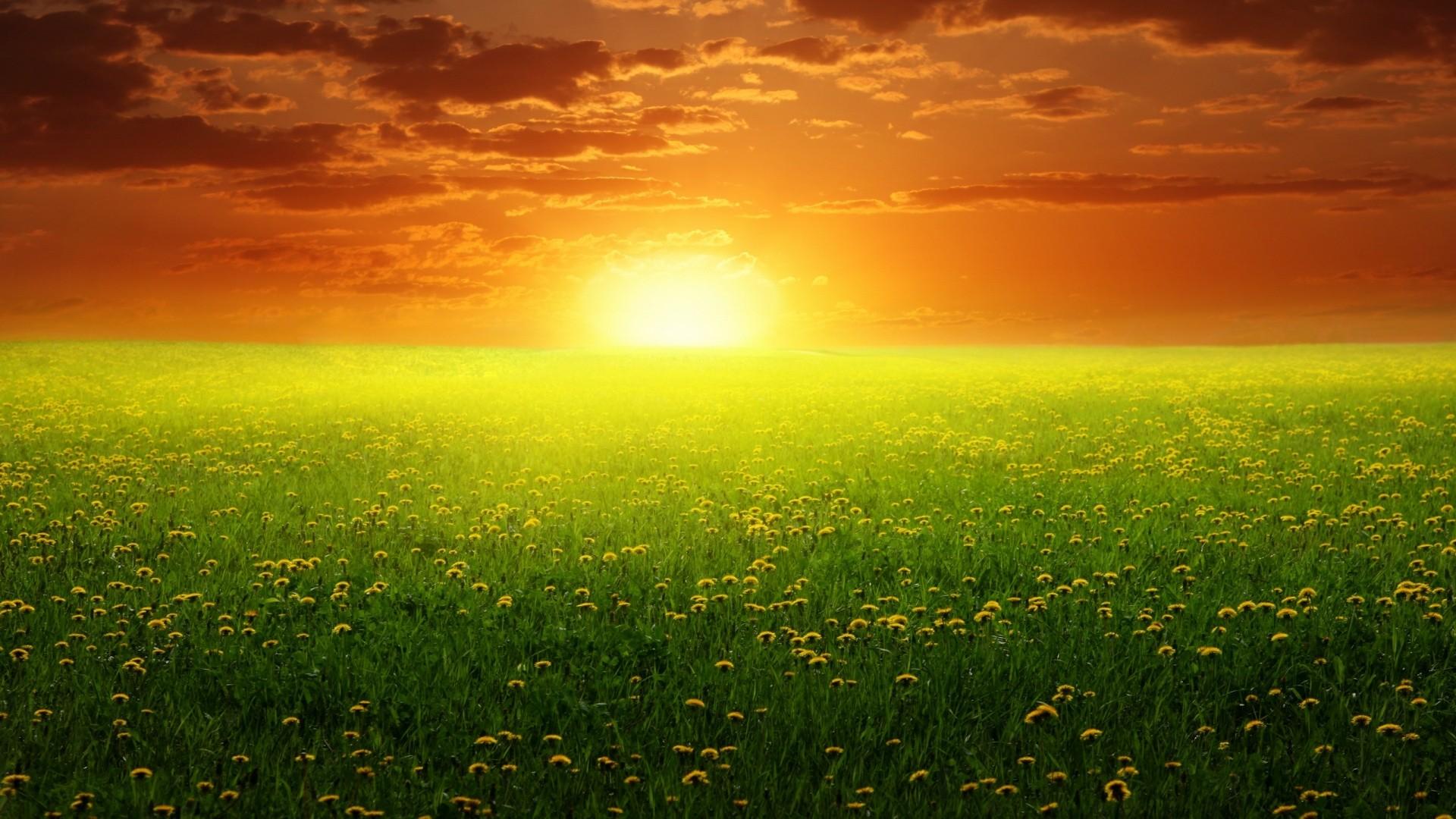 Sun Full HD Wallpaper