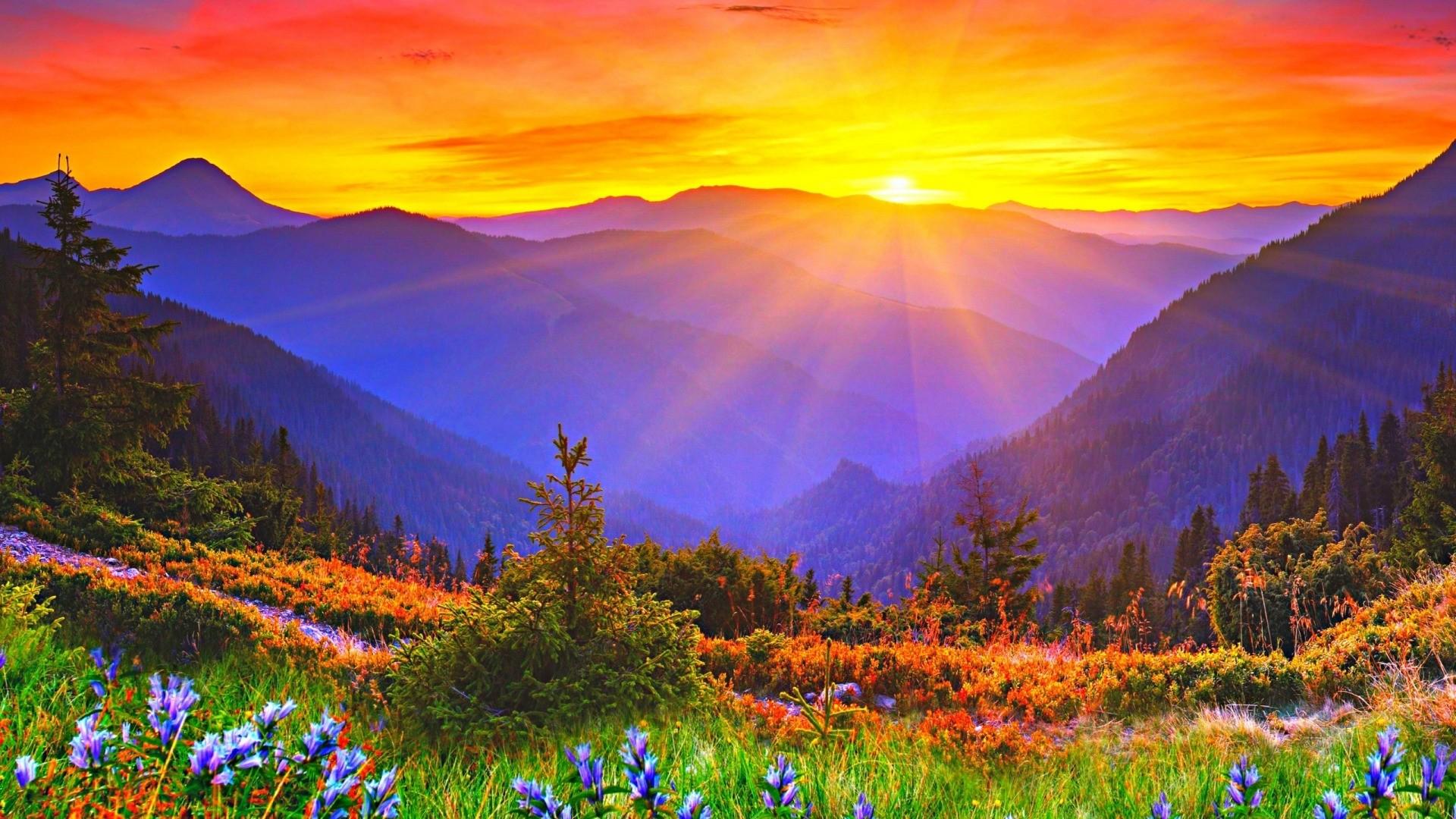Sun hd desktop wallpaper
