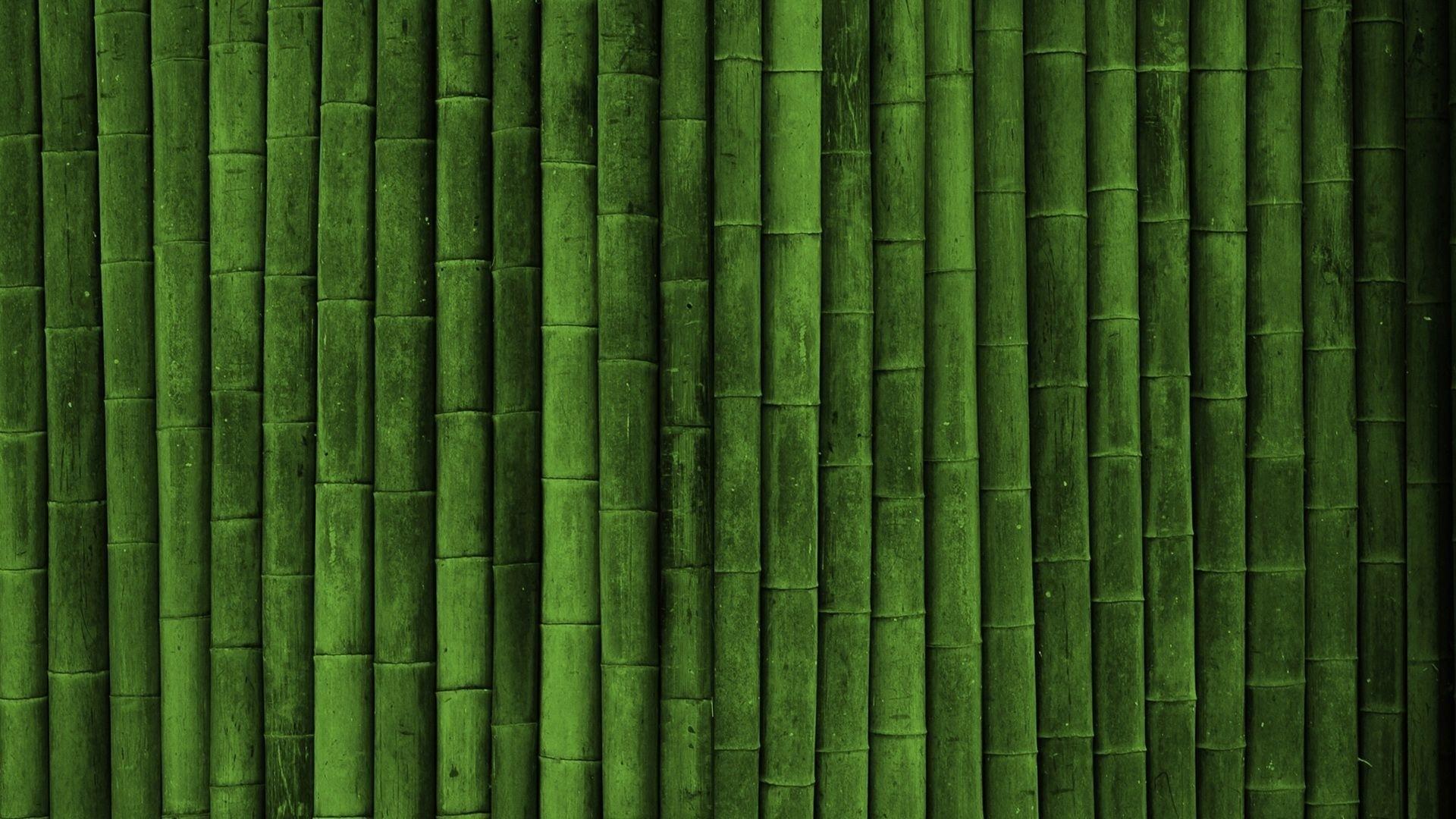 Bamboo hd desktop wallpaper