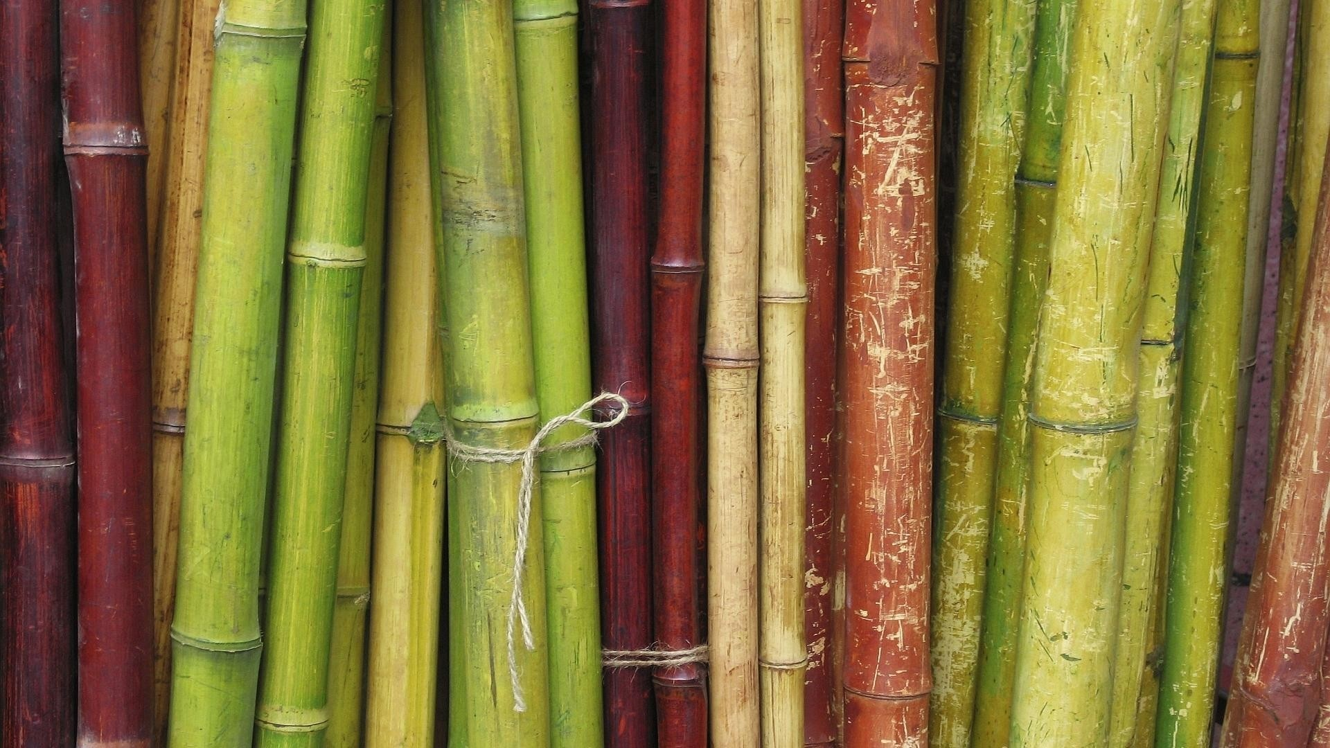 Bamboo Wallpaper theme