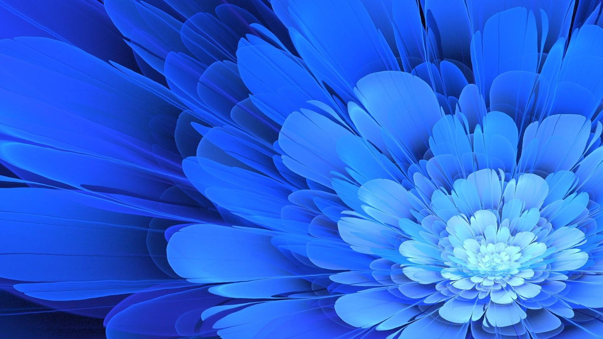 Blue Flower hd desktop wallpaper