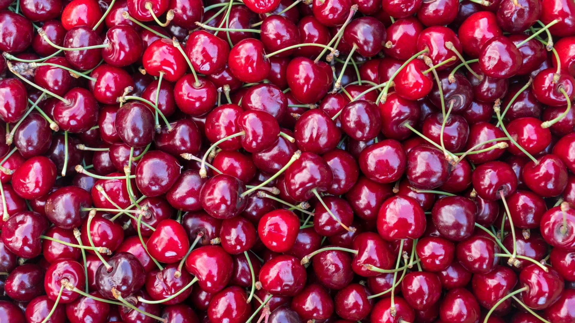 Cherry Free Wallpaper and Background