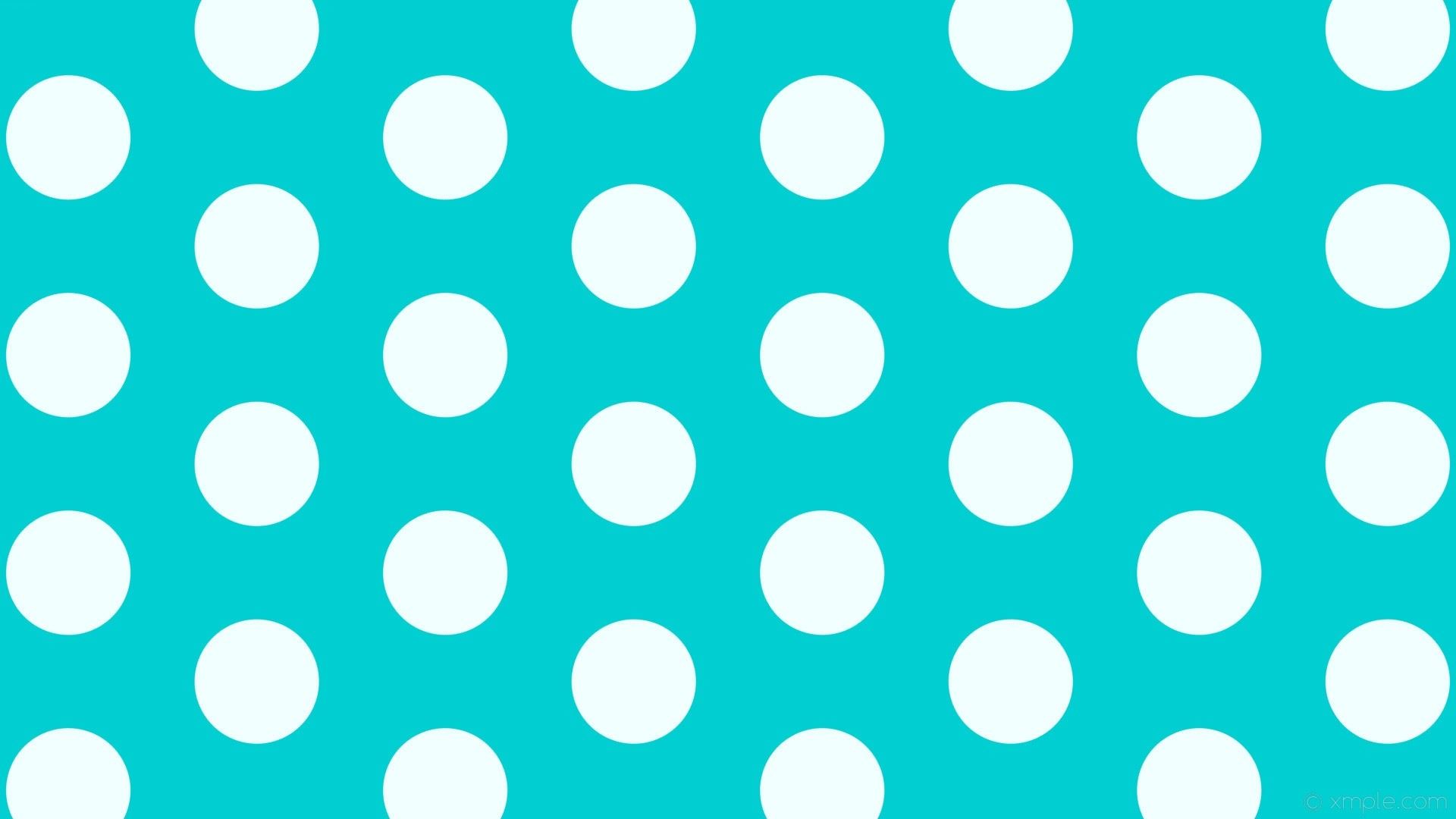 Polka Dot High Quality