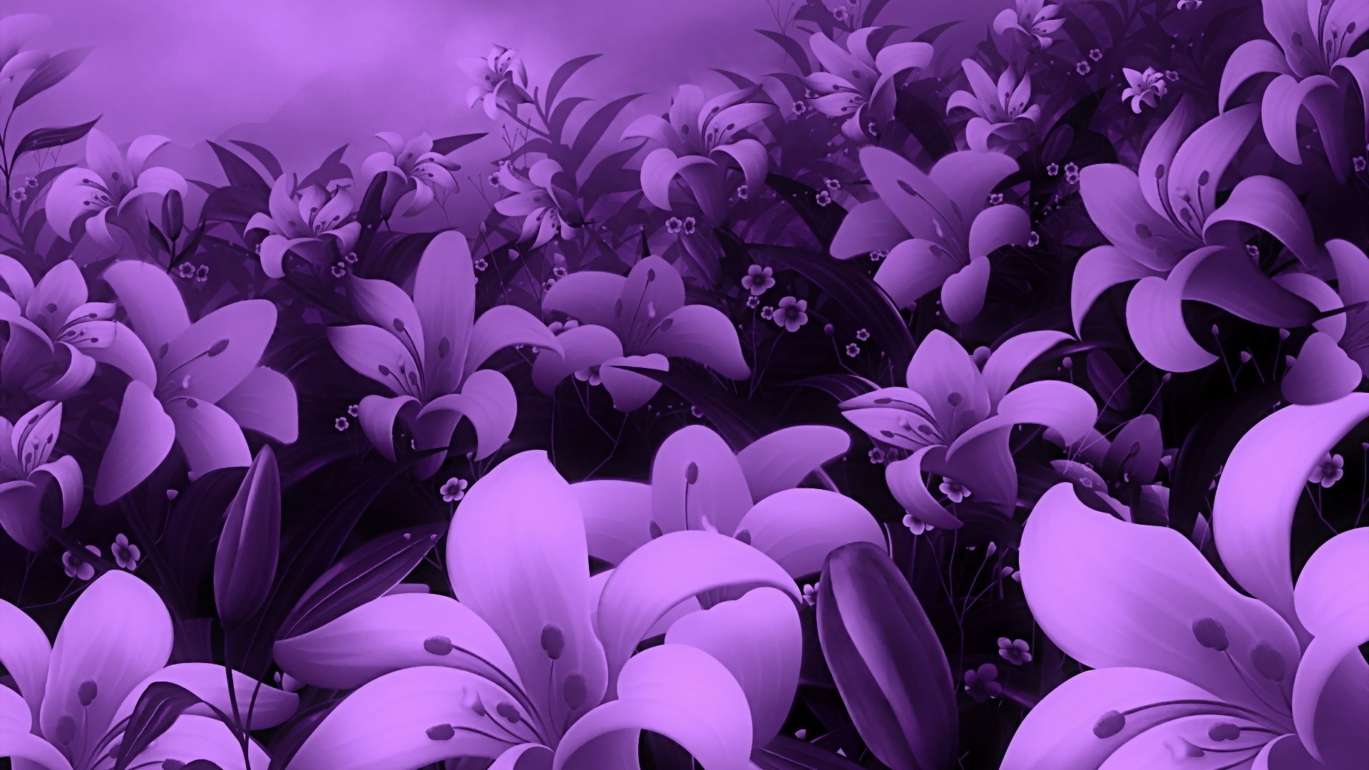 Purple Flower HD Wallpaper