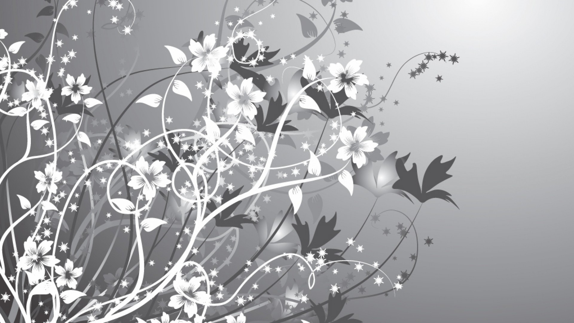 Black And White Floral computer wallpaper