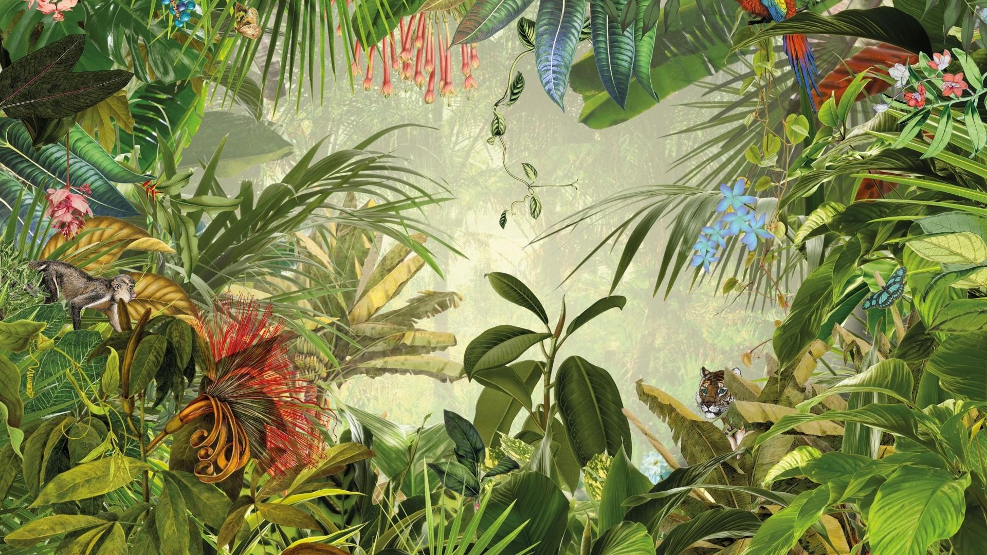 Tropical Leaf Download Wallpaper