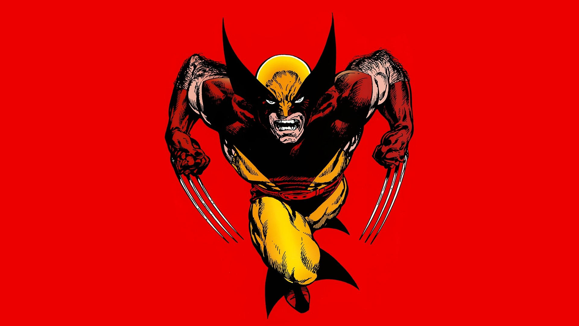 Wolverine Wallpaper and Background