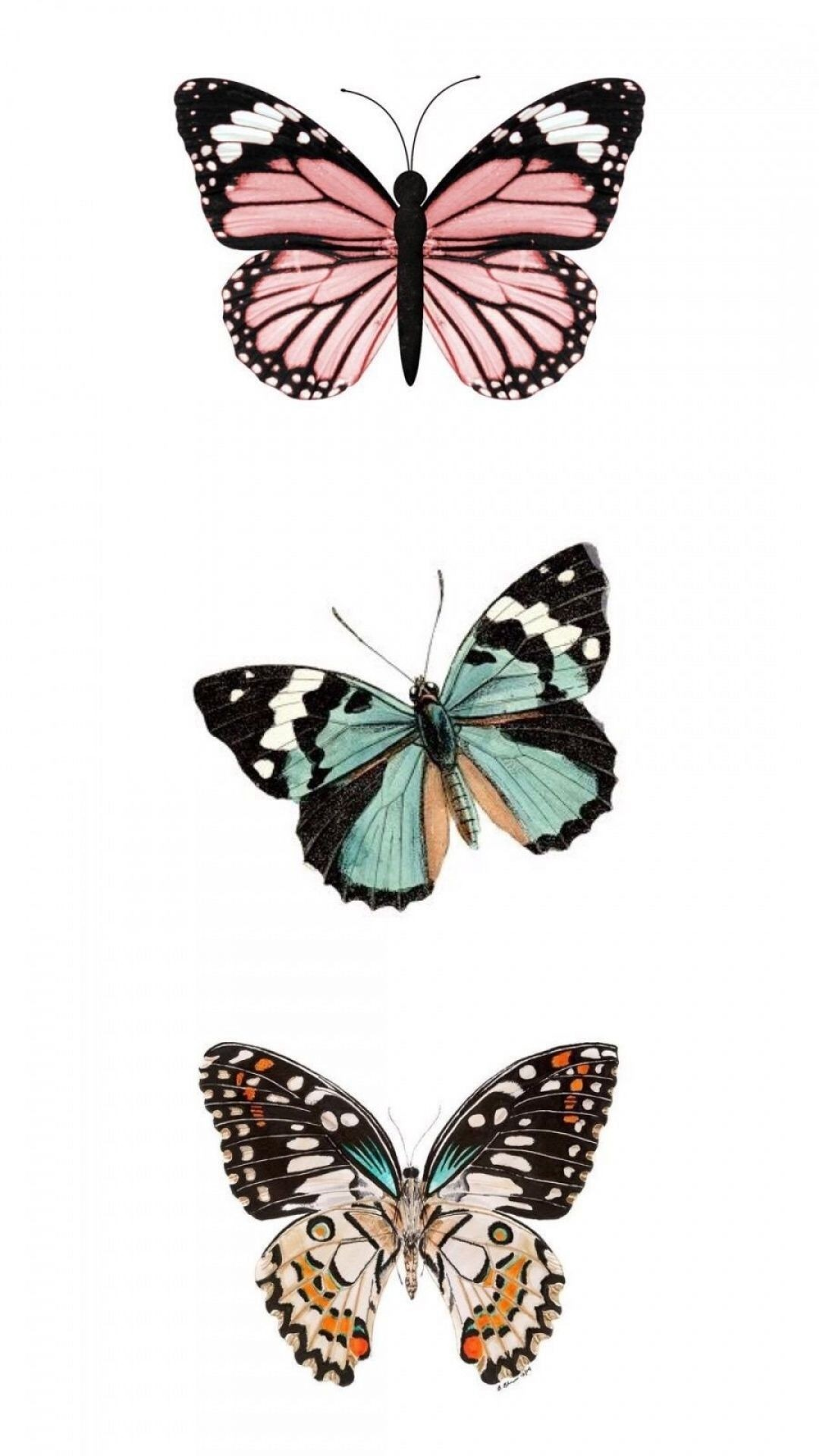 Aesthetic Butterfly lock screen wallpaper