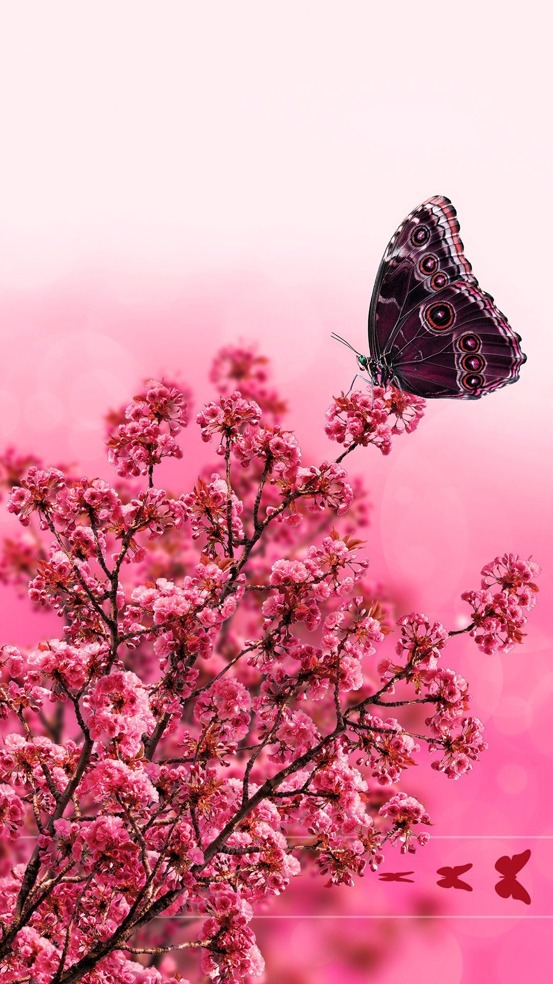 Aesthetic Butterfly iphone