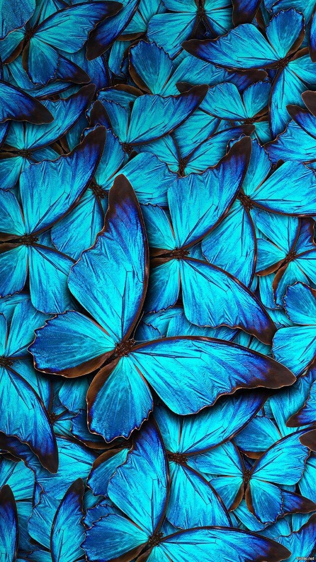 Aesthetic Butterfly iphone 8 wallpaper