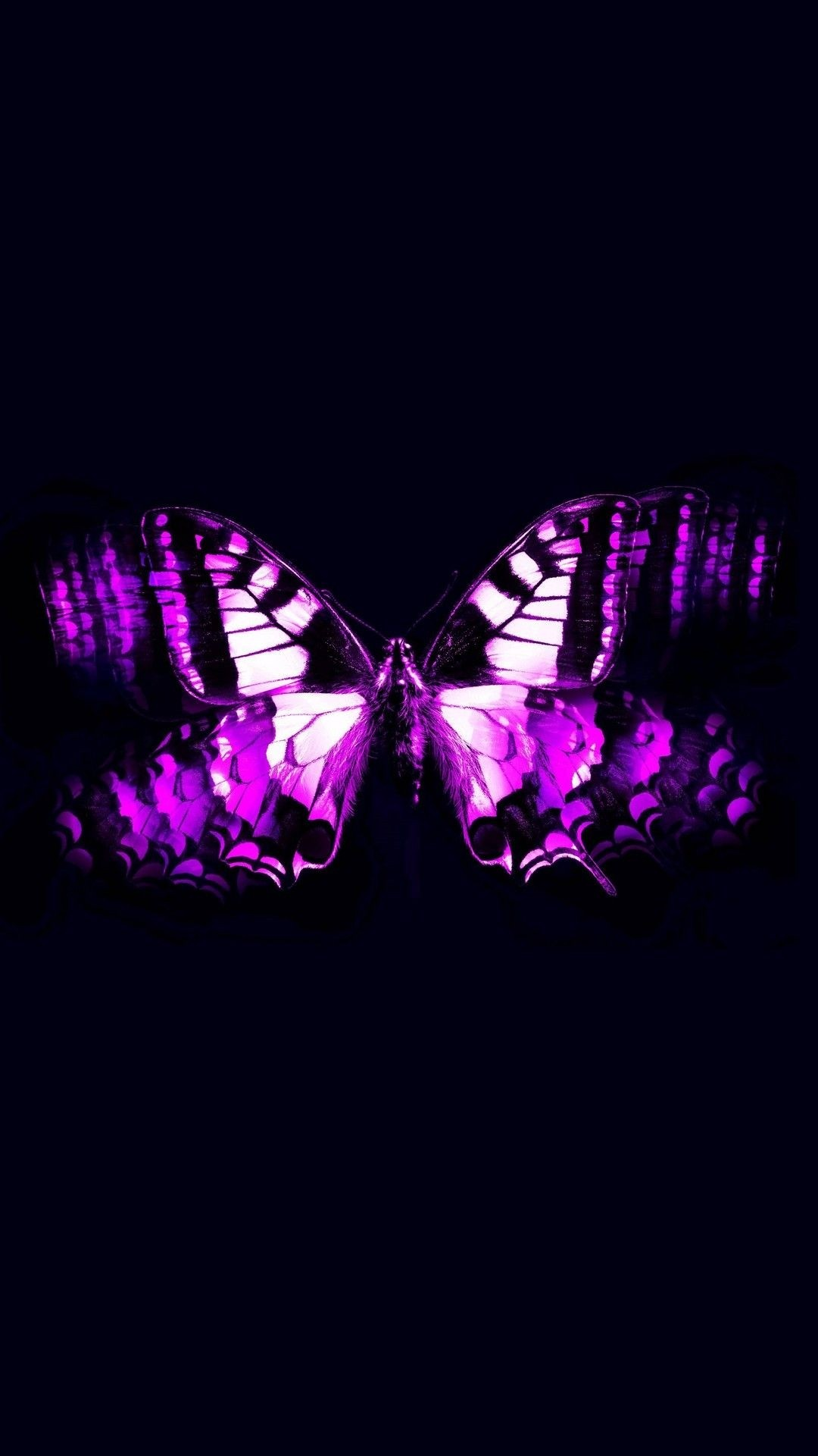 Aesthetic Butterfly hd wallpaper for mobile