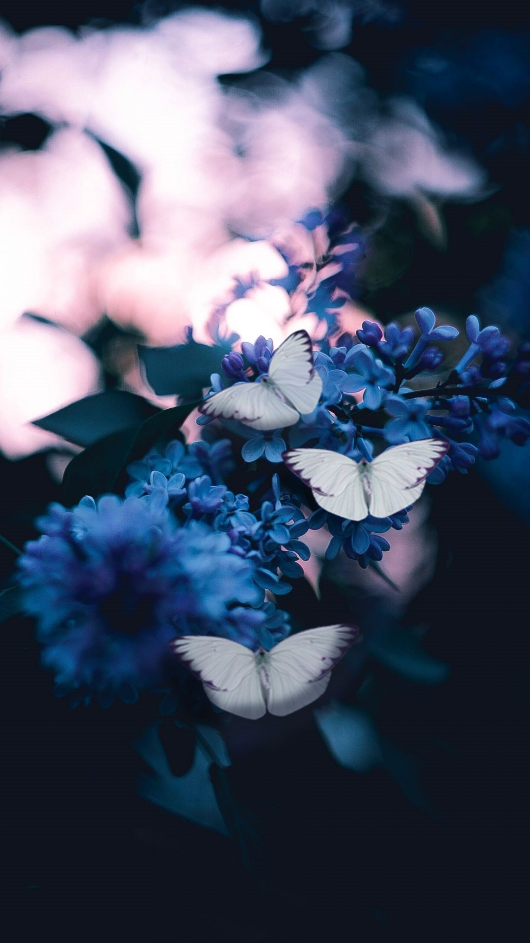 Aesthetic Butterfly wallpaper for android