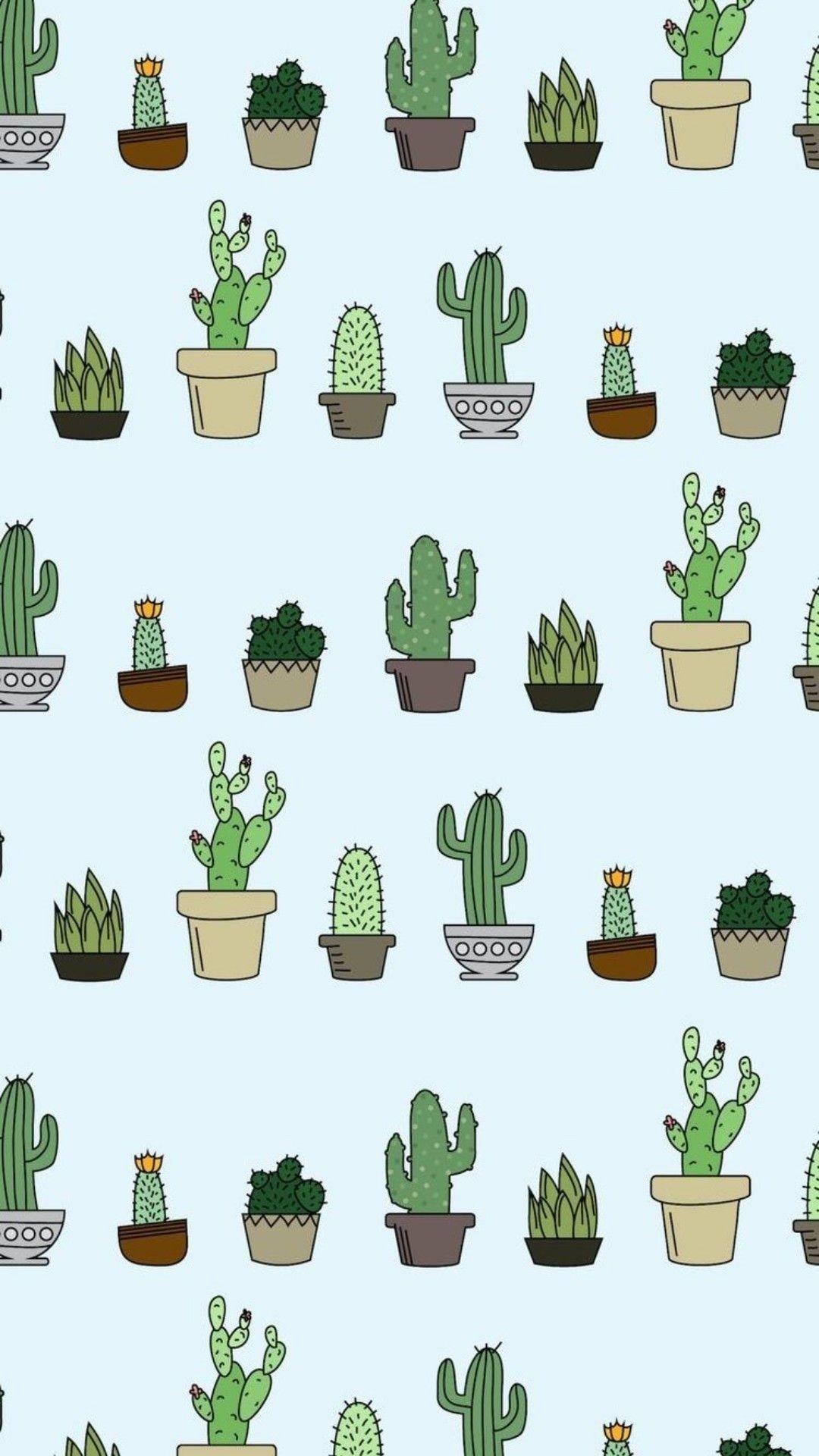 Cactus iphone home screen wallpaper