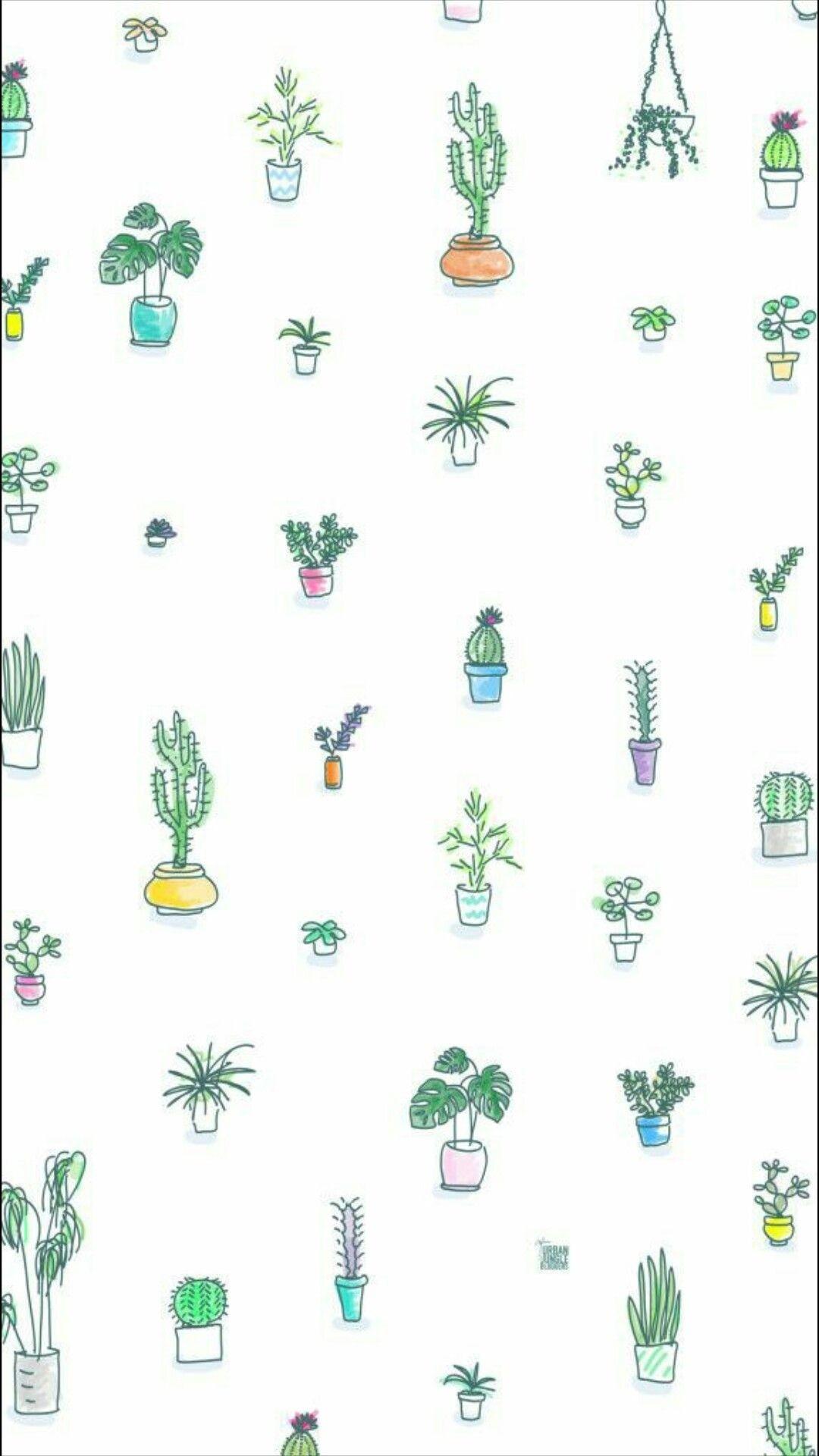 Cactus screensaver wallpaper
