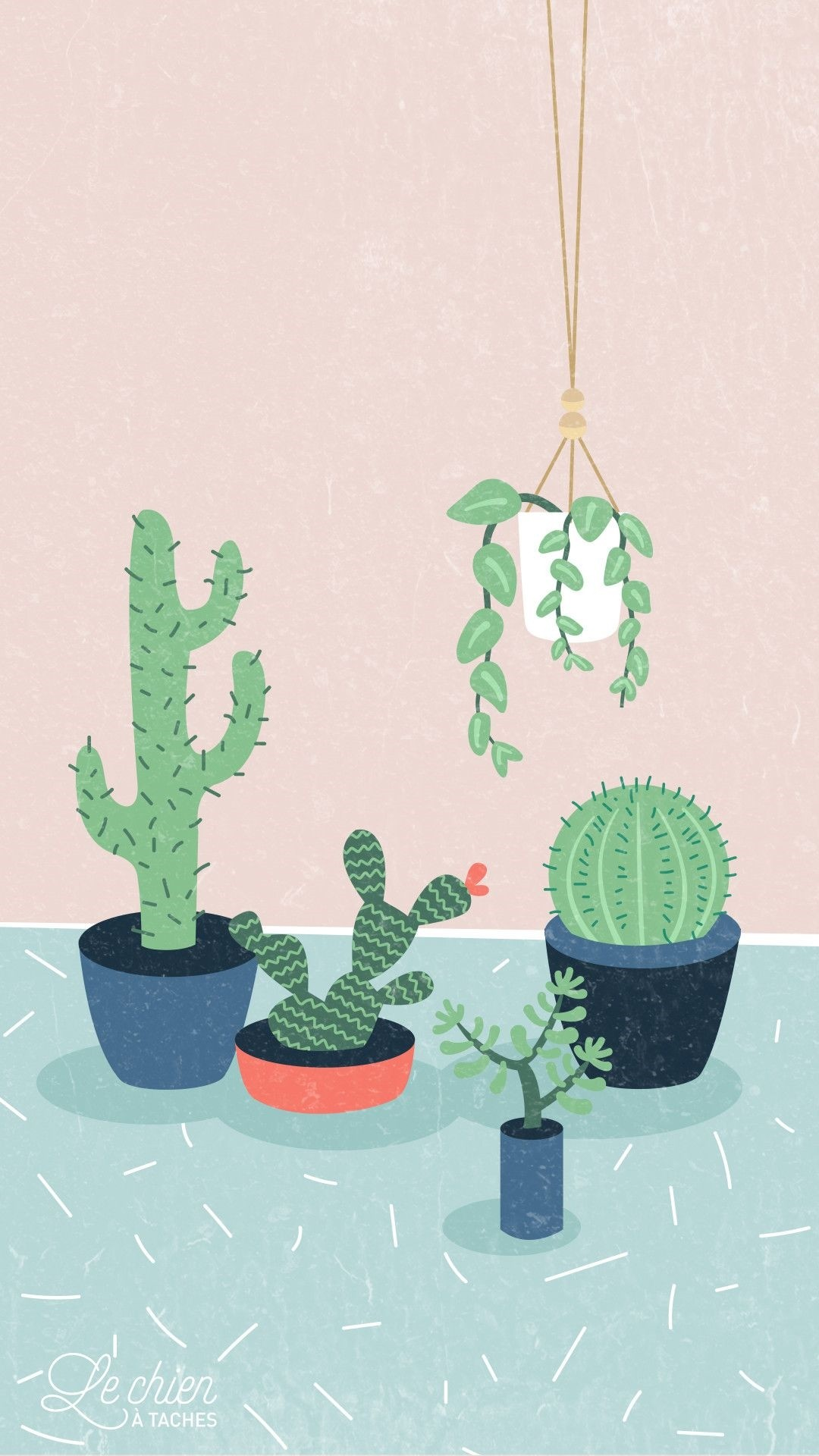 Cactus phone wallpaper hd