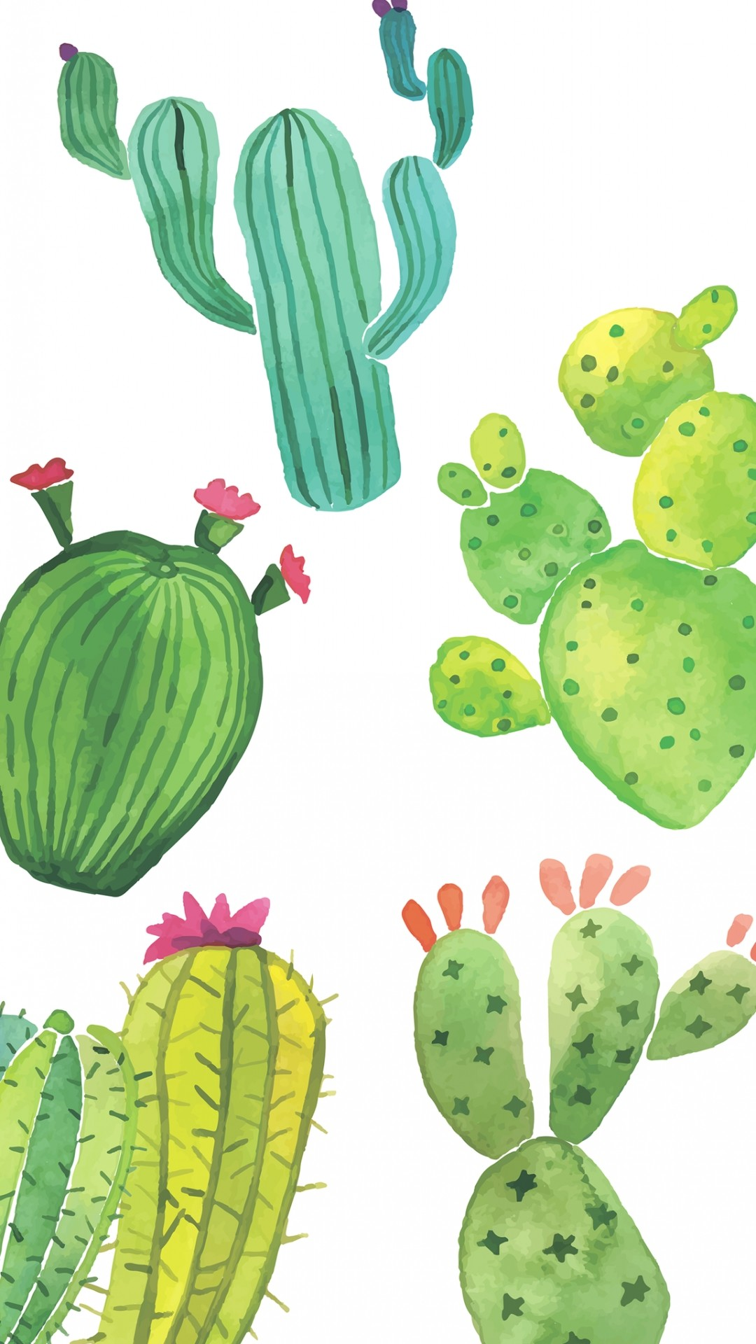 Cactus hd wallpaper for iphone