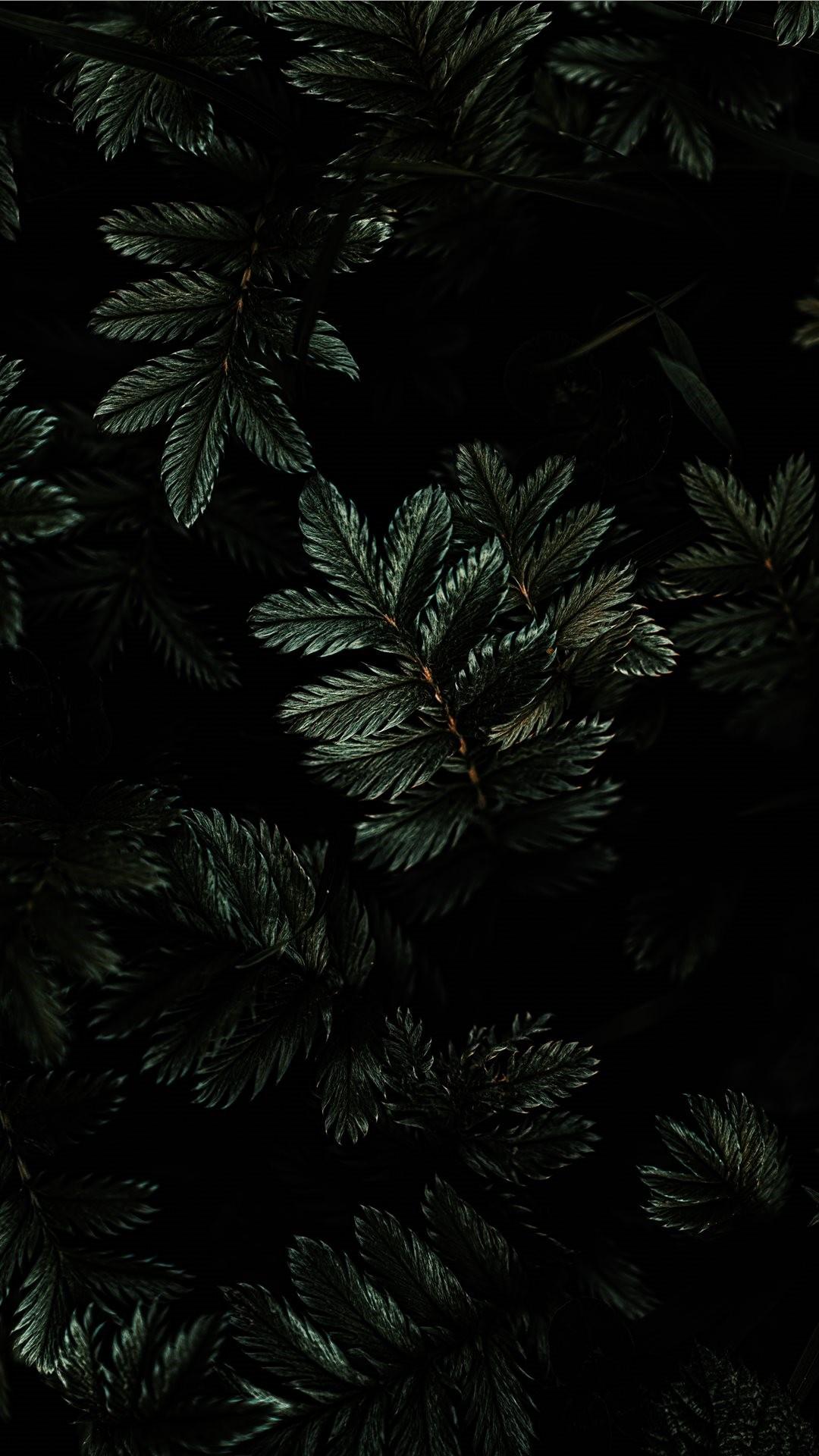 Dark wallpaper for iphone