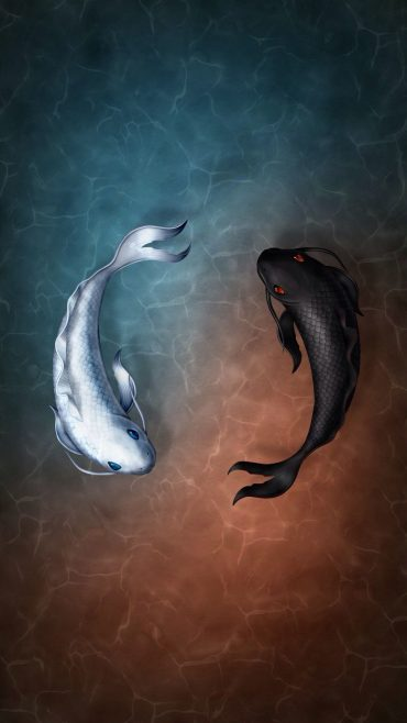 Koi Fish ios wallpaper