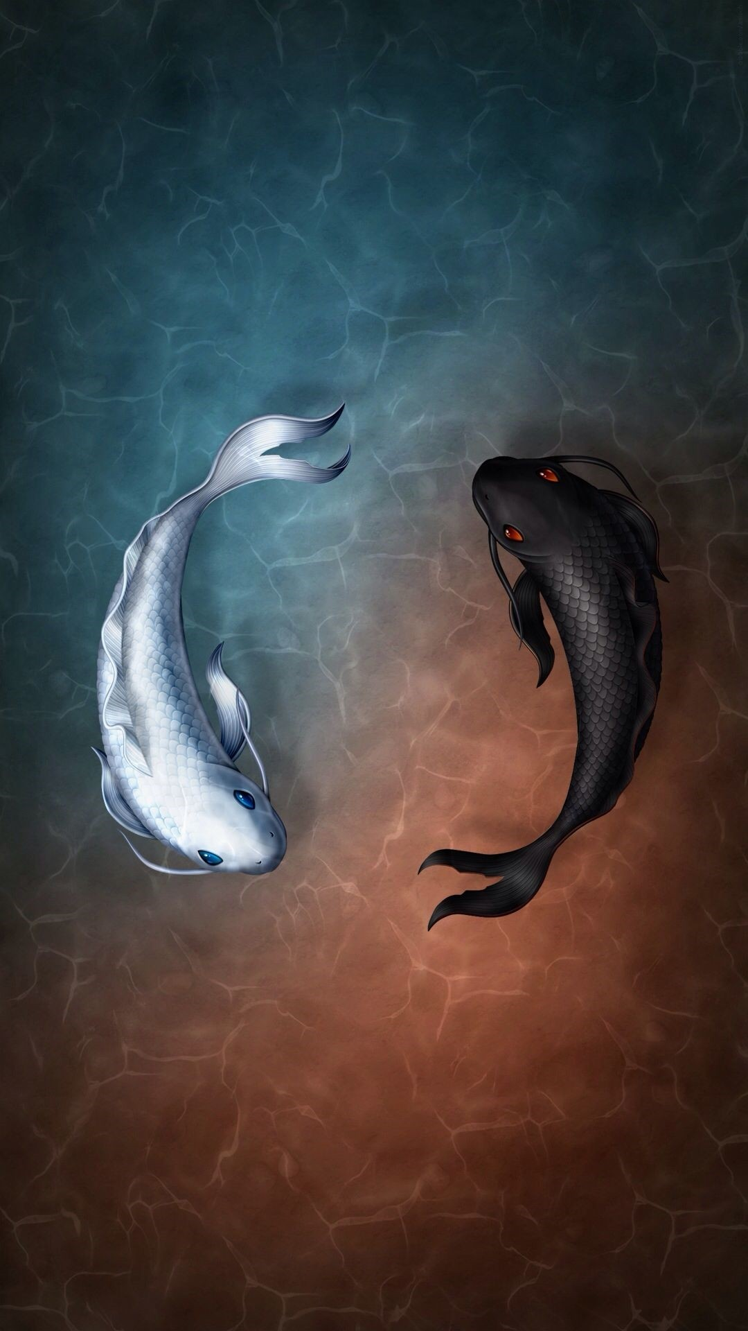 Koi Fish ios wallpaper
