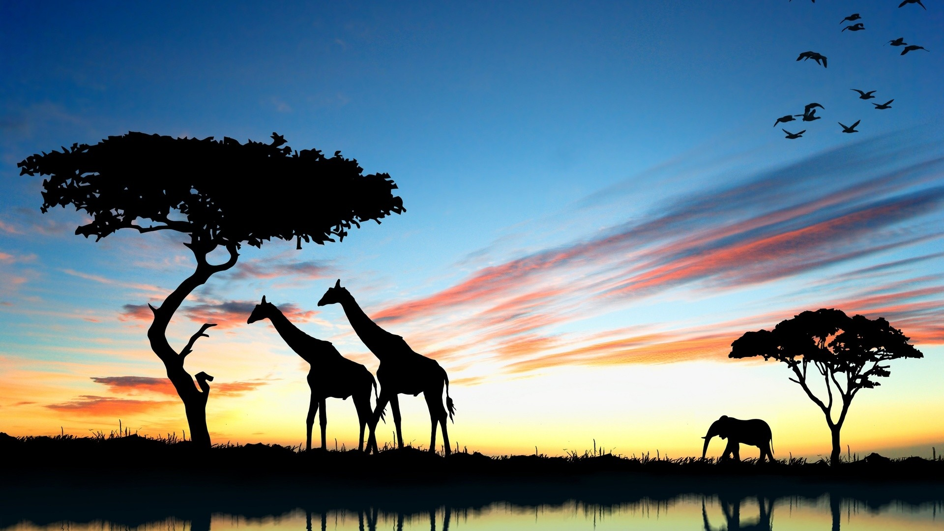 Africa Wallpaper for pc