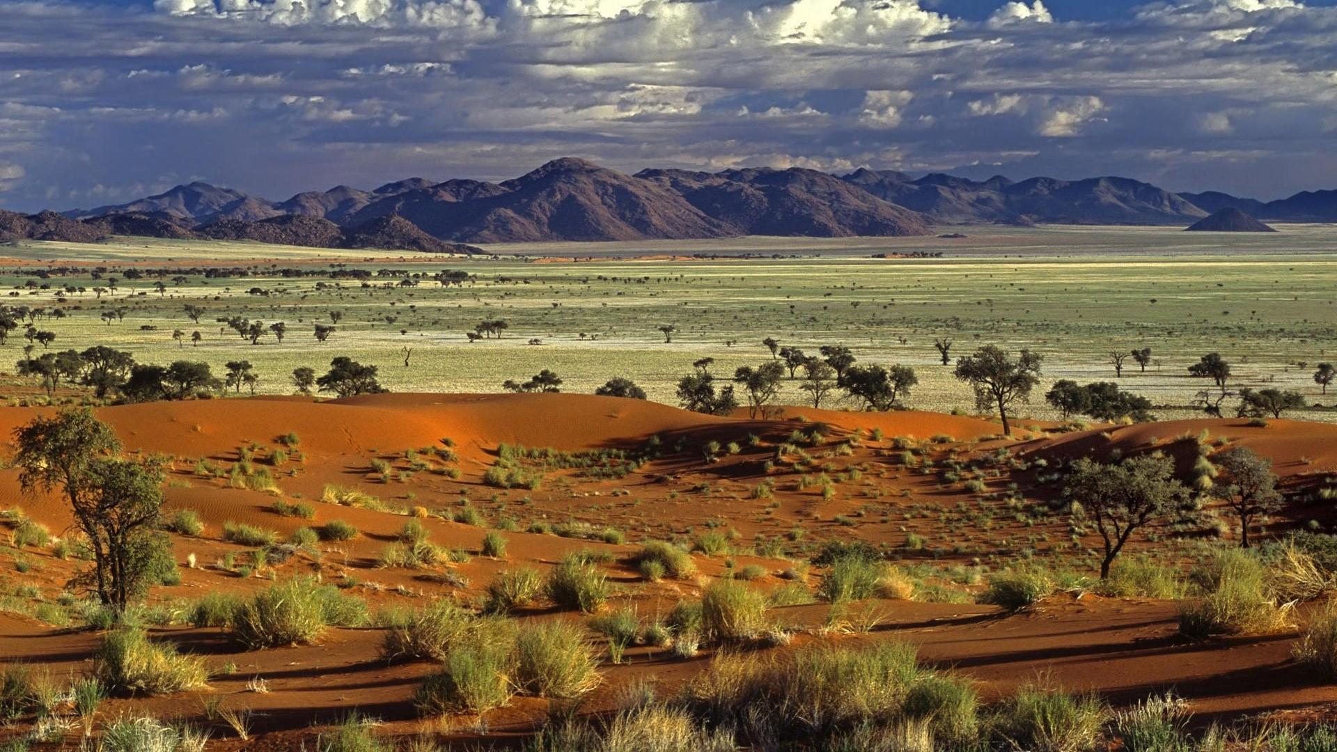 Africa HD Wallpaper