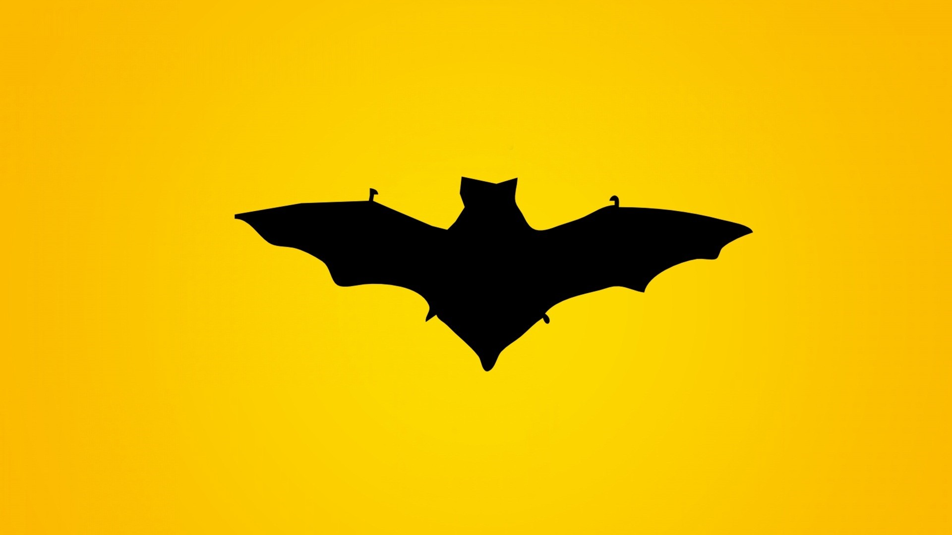 Bat Wallpaper and Background