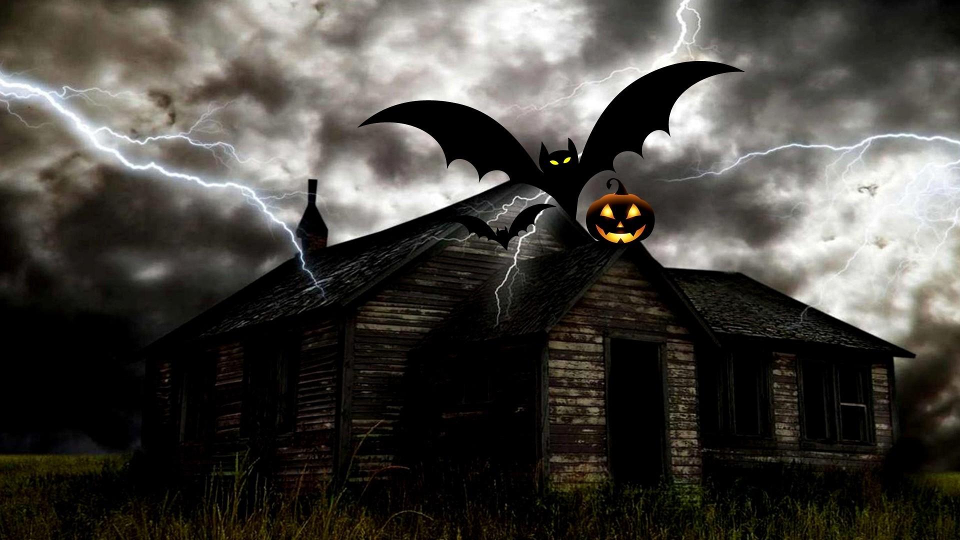 Bat HD Wallpaper