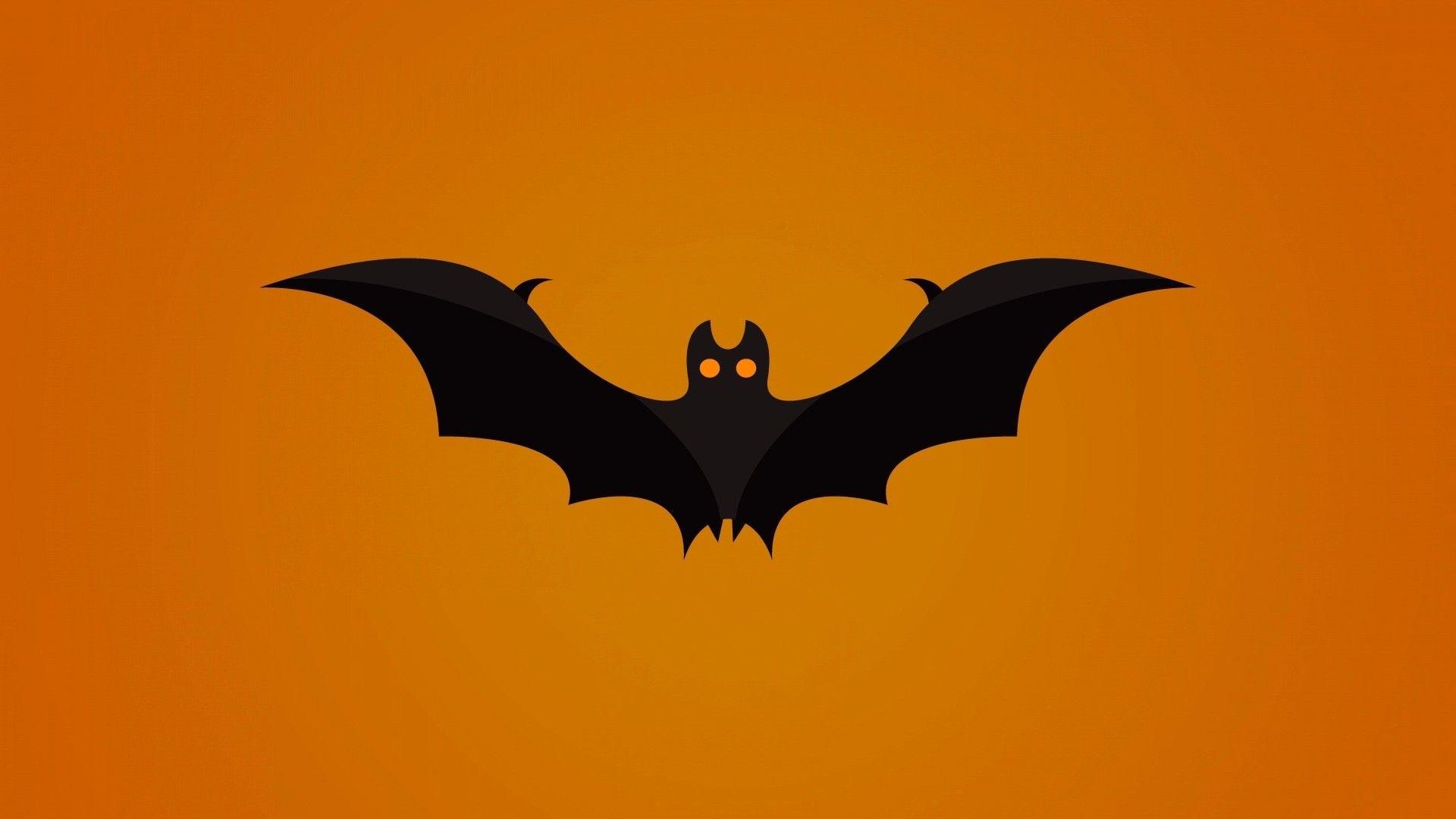 Bat High Quality