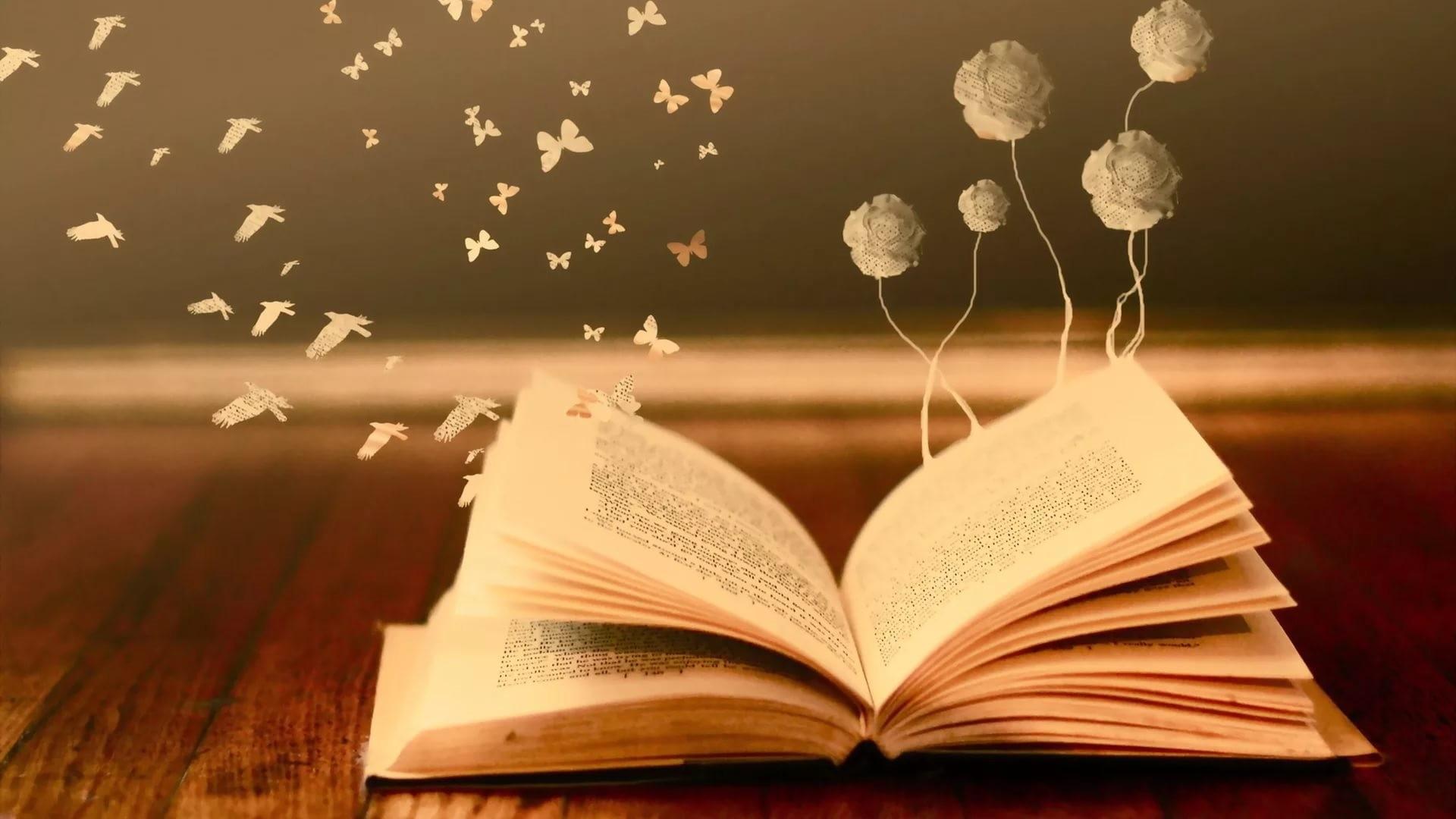 Books Background Wallpaper