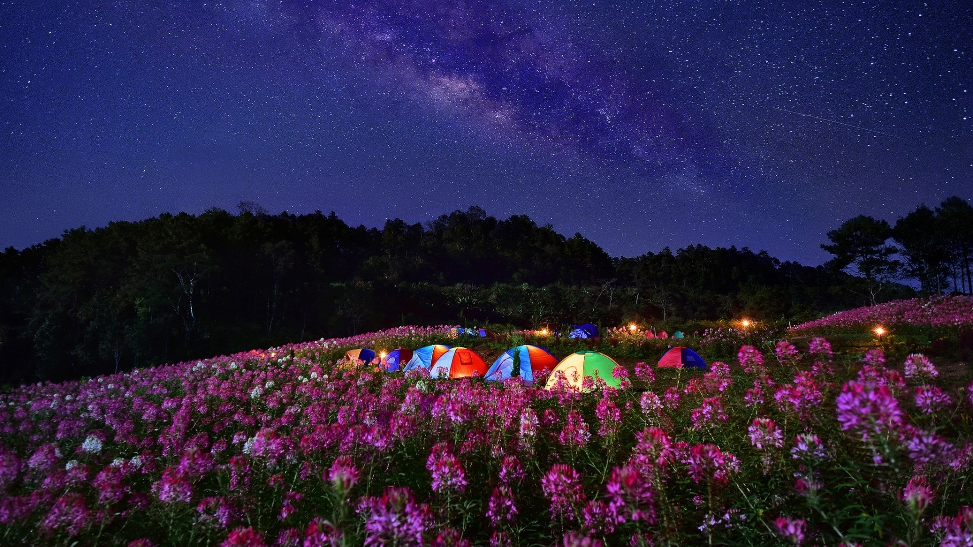 Camping HD Wallpaper