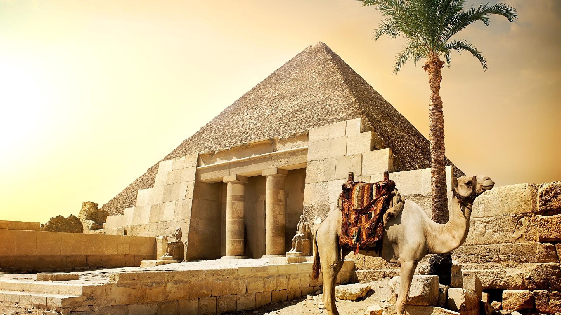 Egypt hd wallpaper download