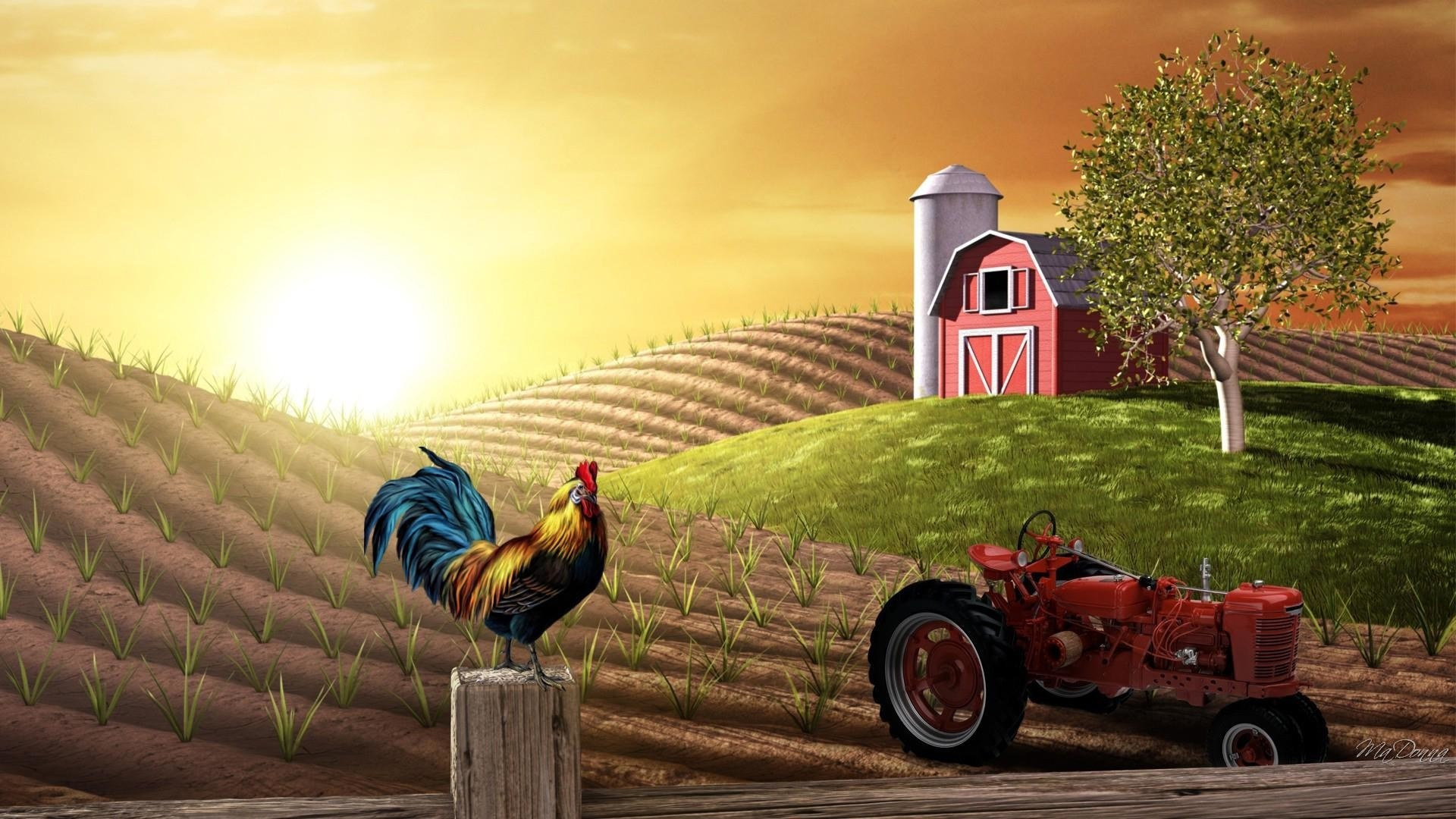 Farm HD Wallpaper