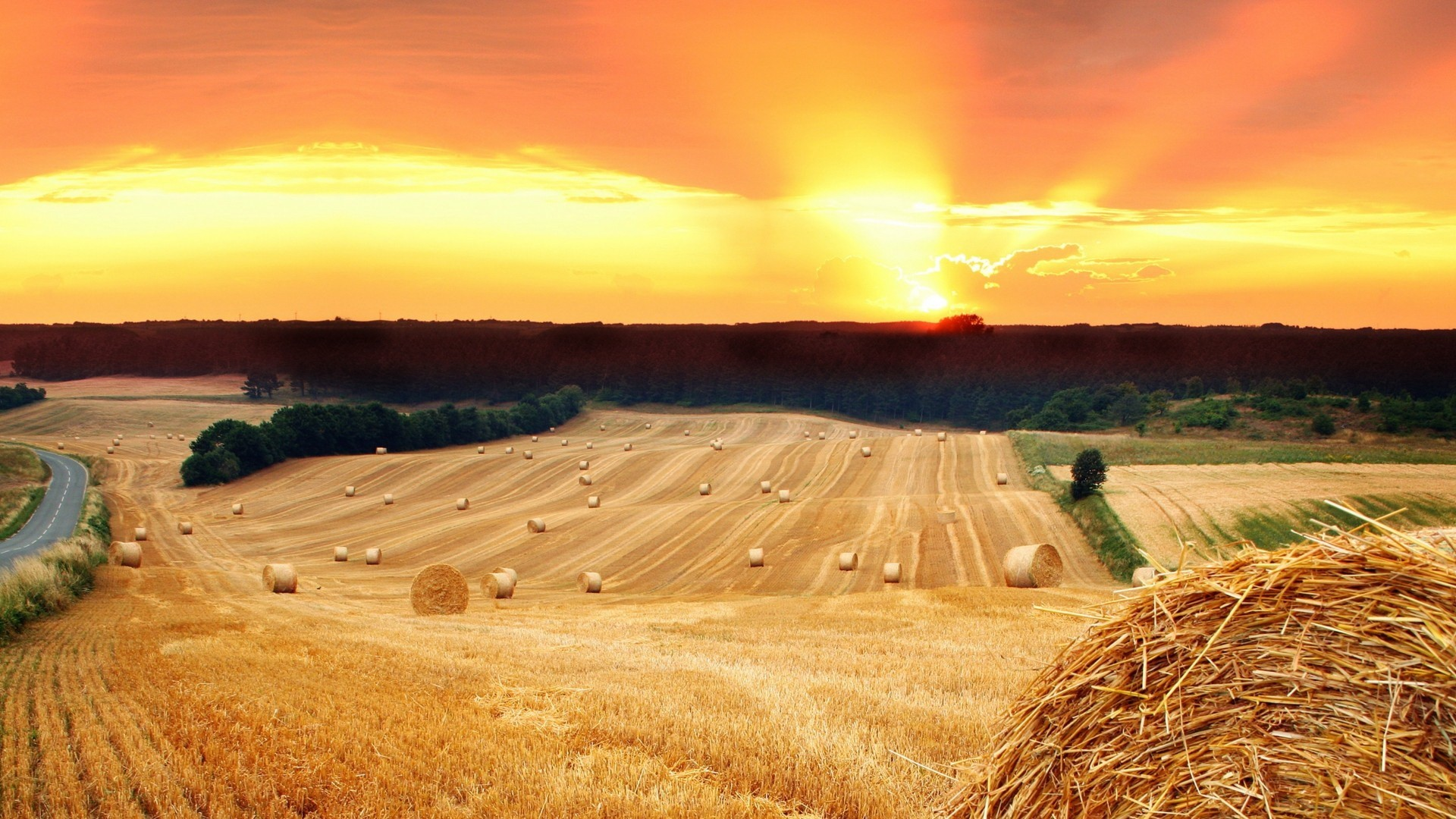 Farm Download Wallpaper