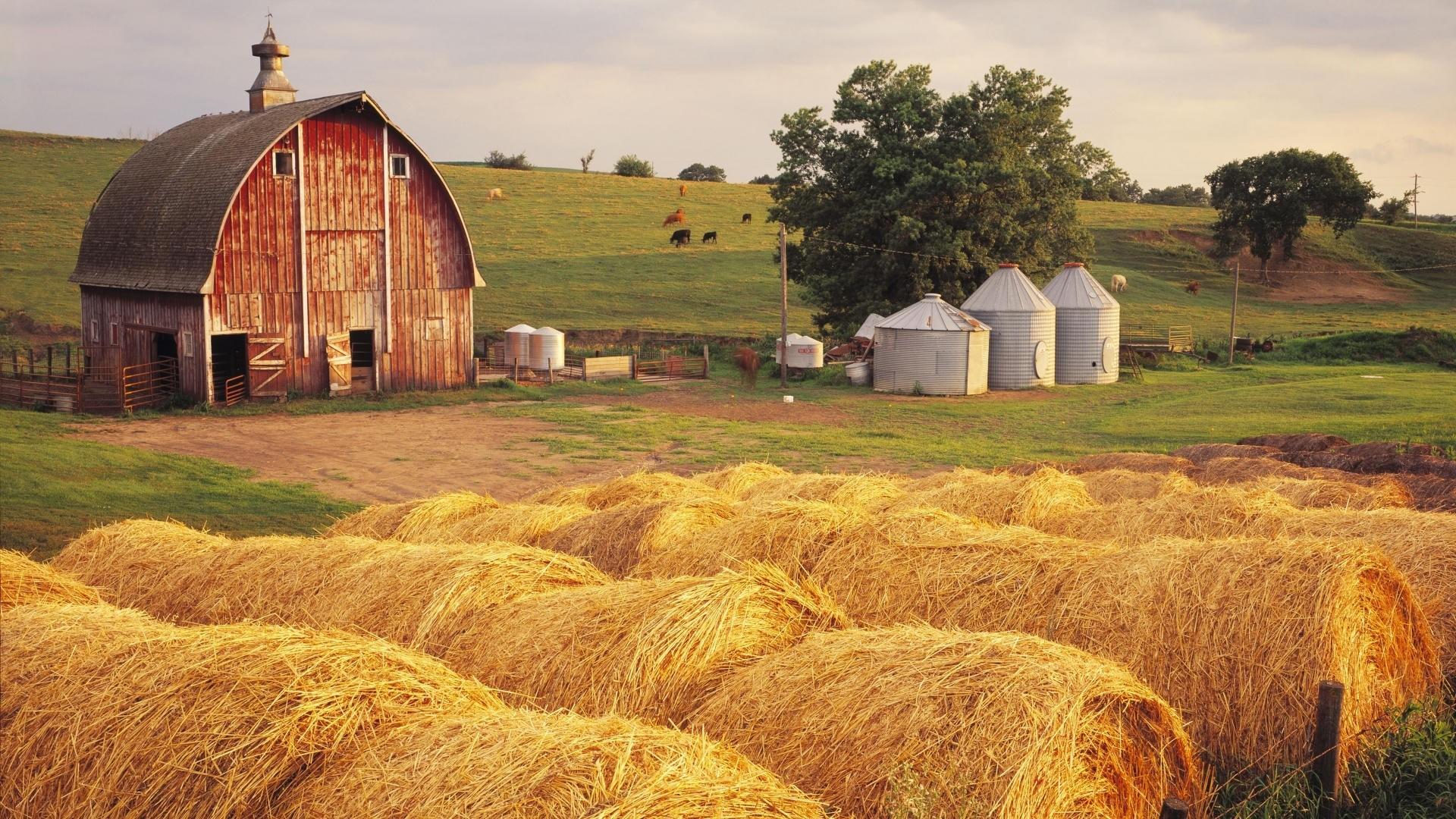 Farm Desktop wallpaper