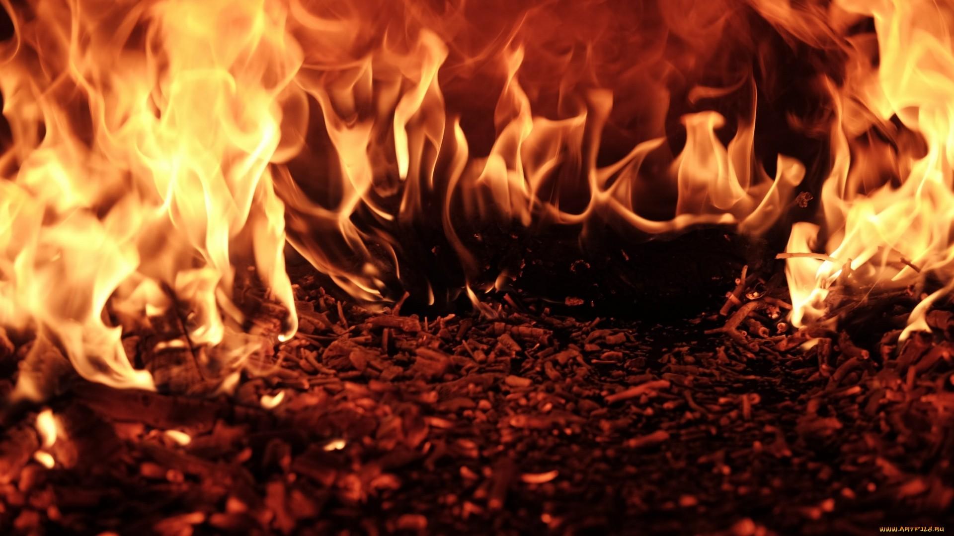 Flame Full HD Wallpaper