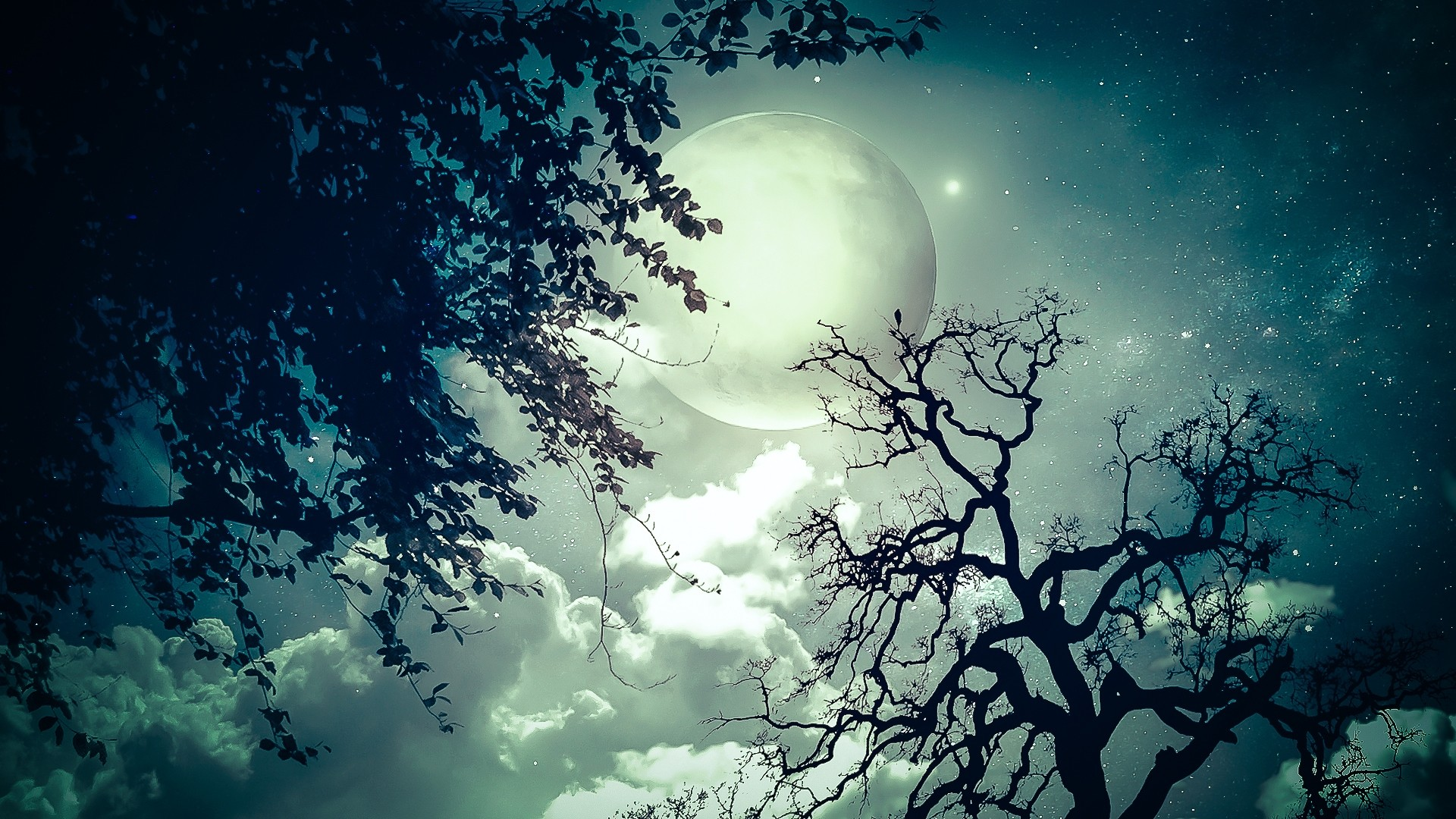 Moon And Stars Download Wallpaper