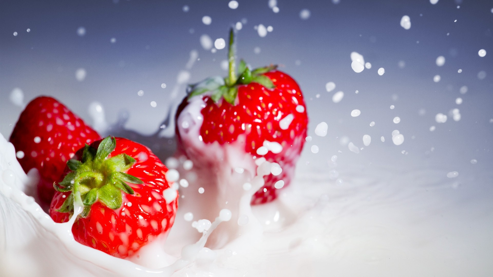 21 Strawberry Wallpapers Wallpaperboat