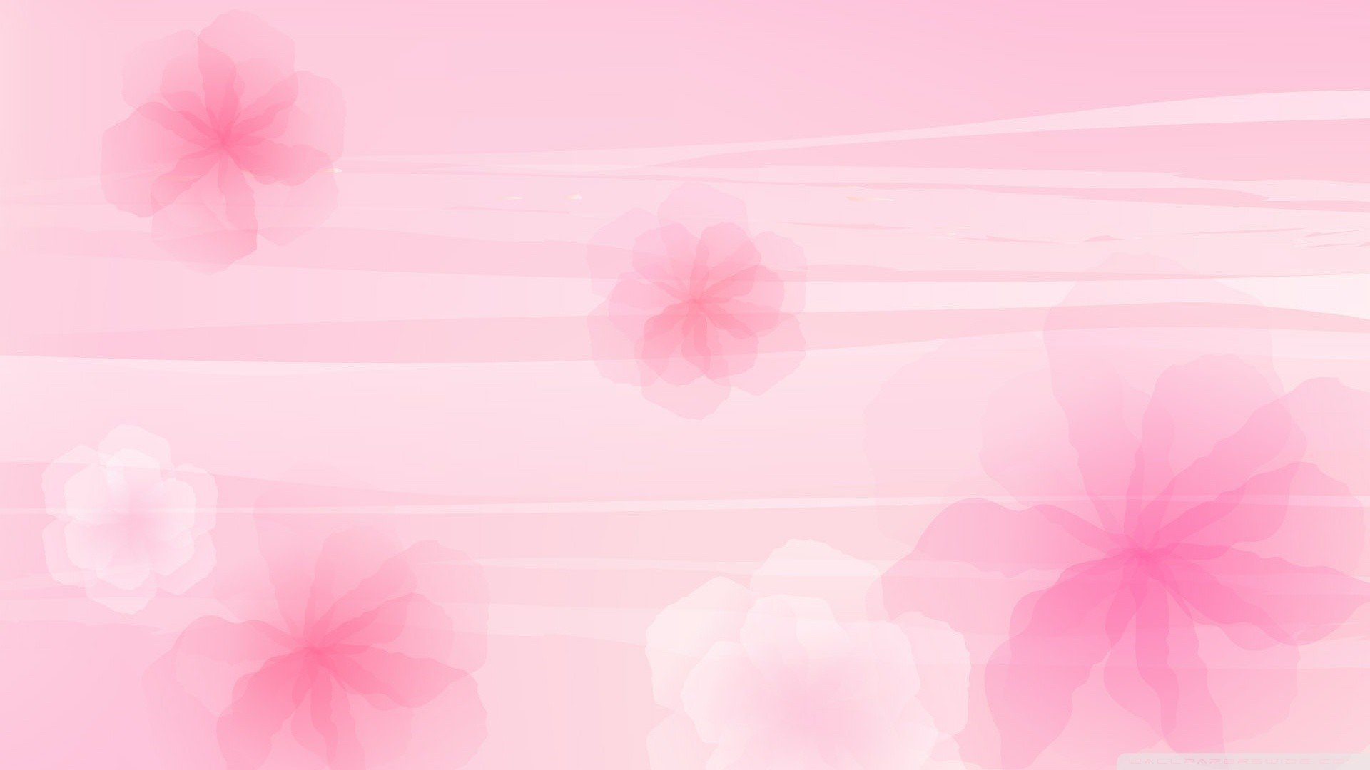 Baby Pink wallpaper photo hd