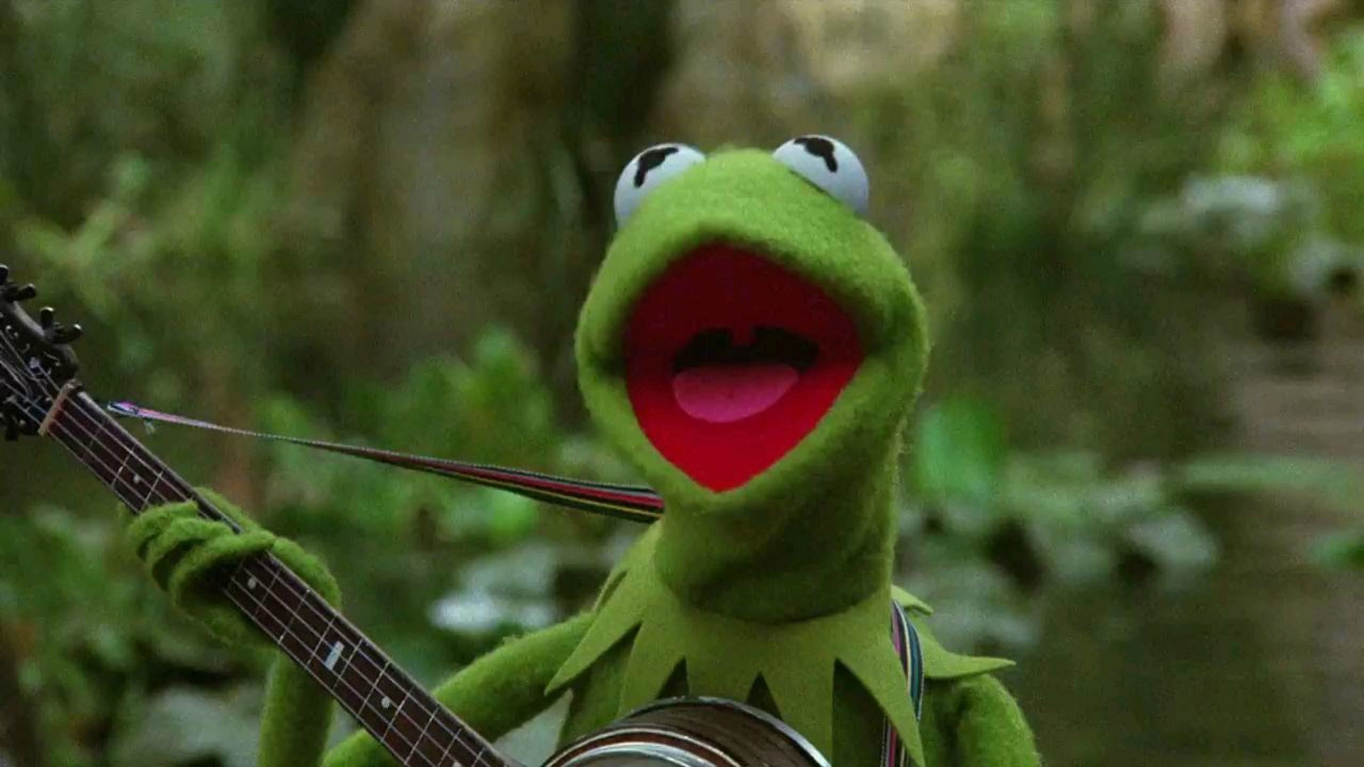 Hearts Kermit The Frog Picture