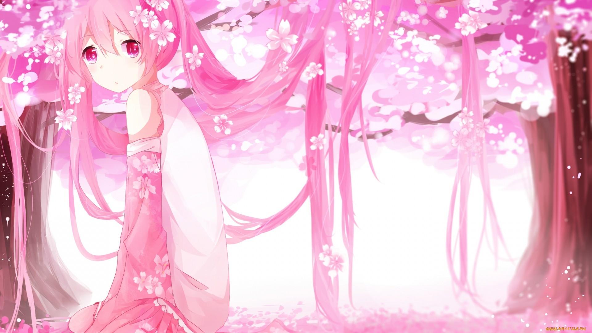Pink Hair Anime Girl wallpaper photo hd