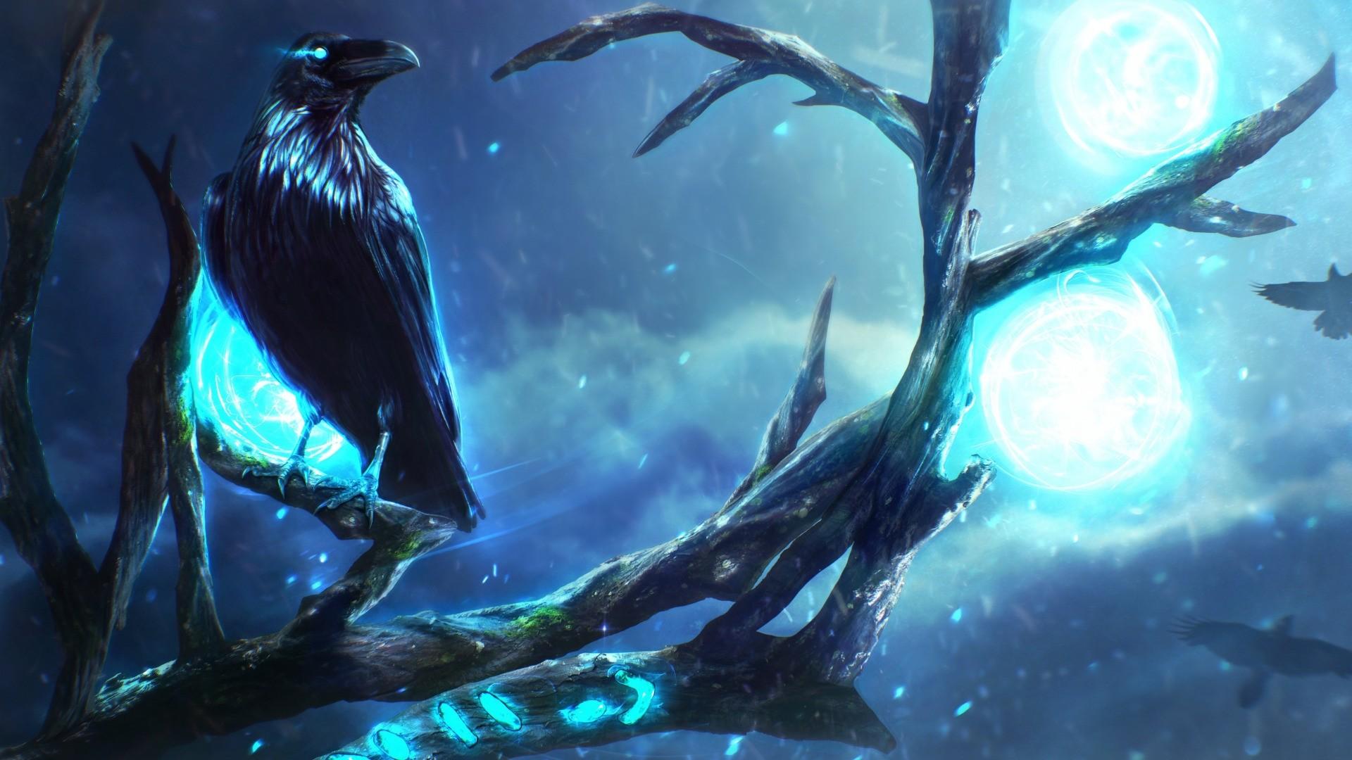 Raven HD Wallpaper