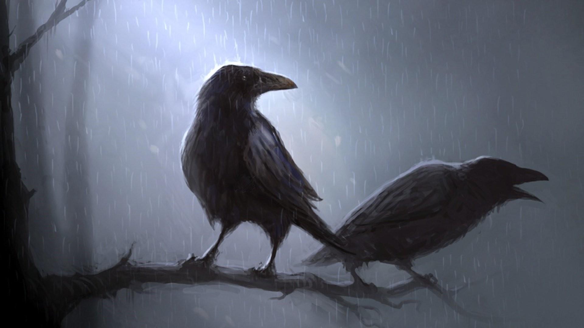 Raven HD Download