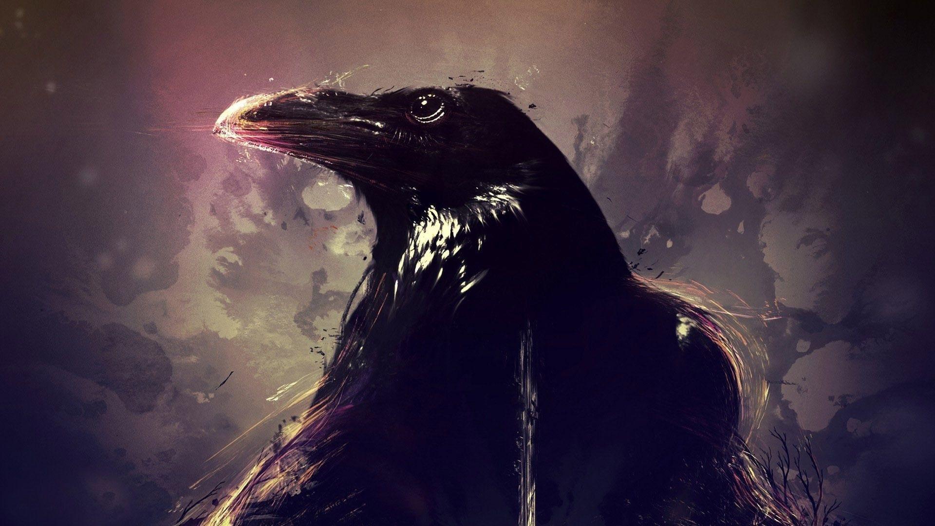 Raven Desktop Wallpaper