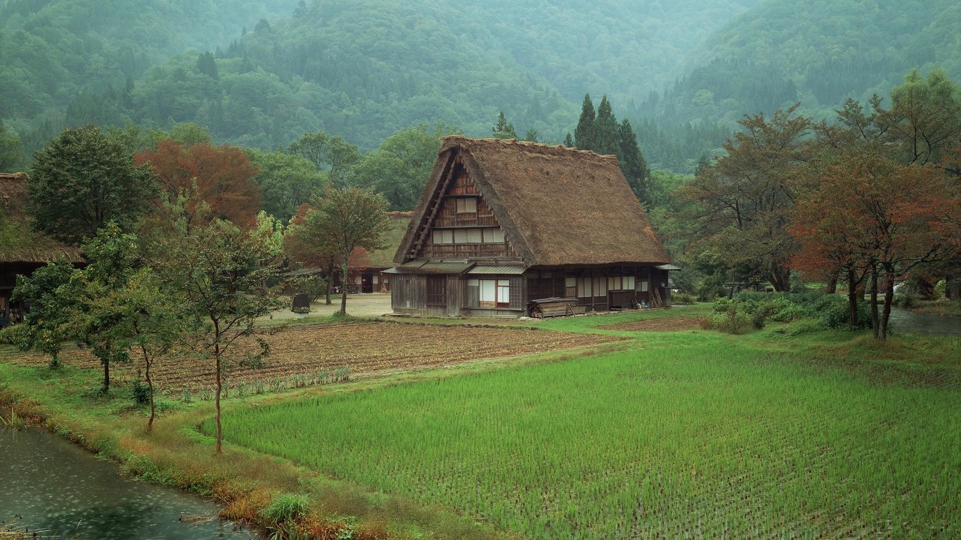 Leaf Village HD Download